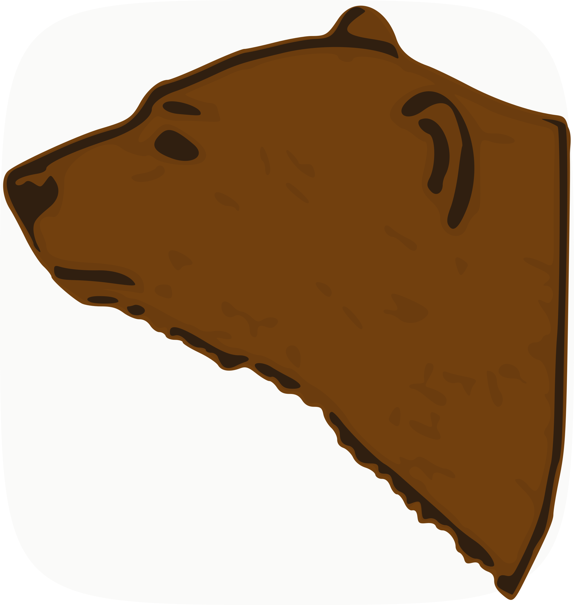 Bear Head by animals