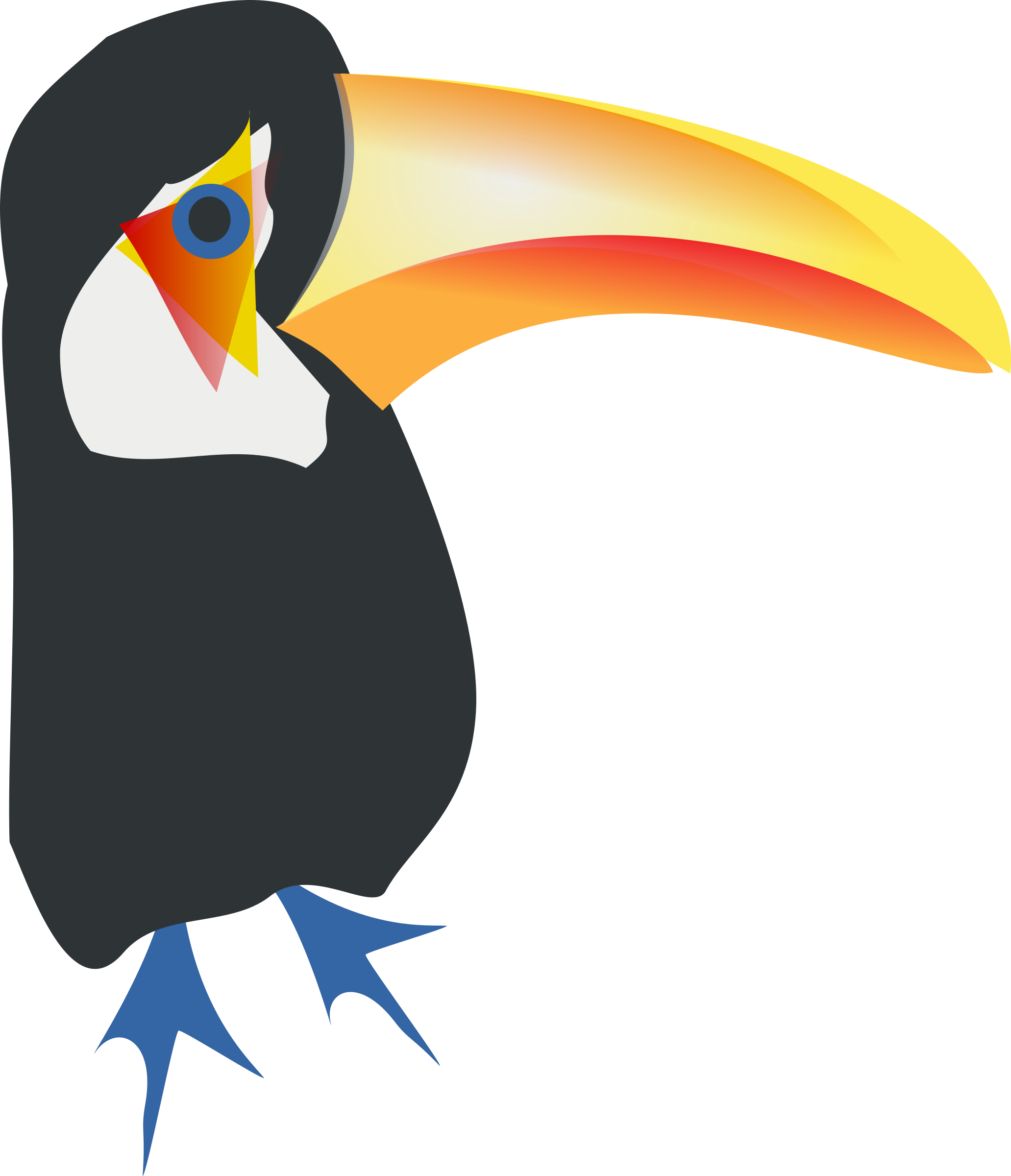 toucan toco by chatard