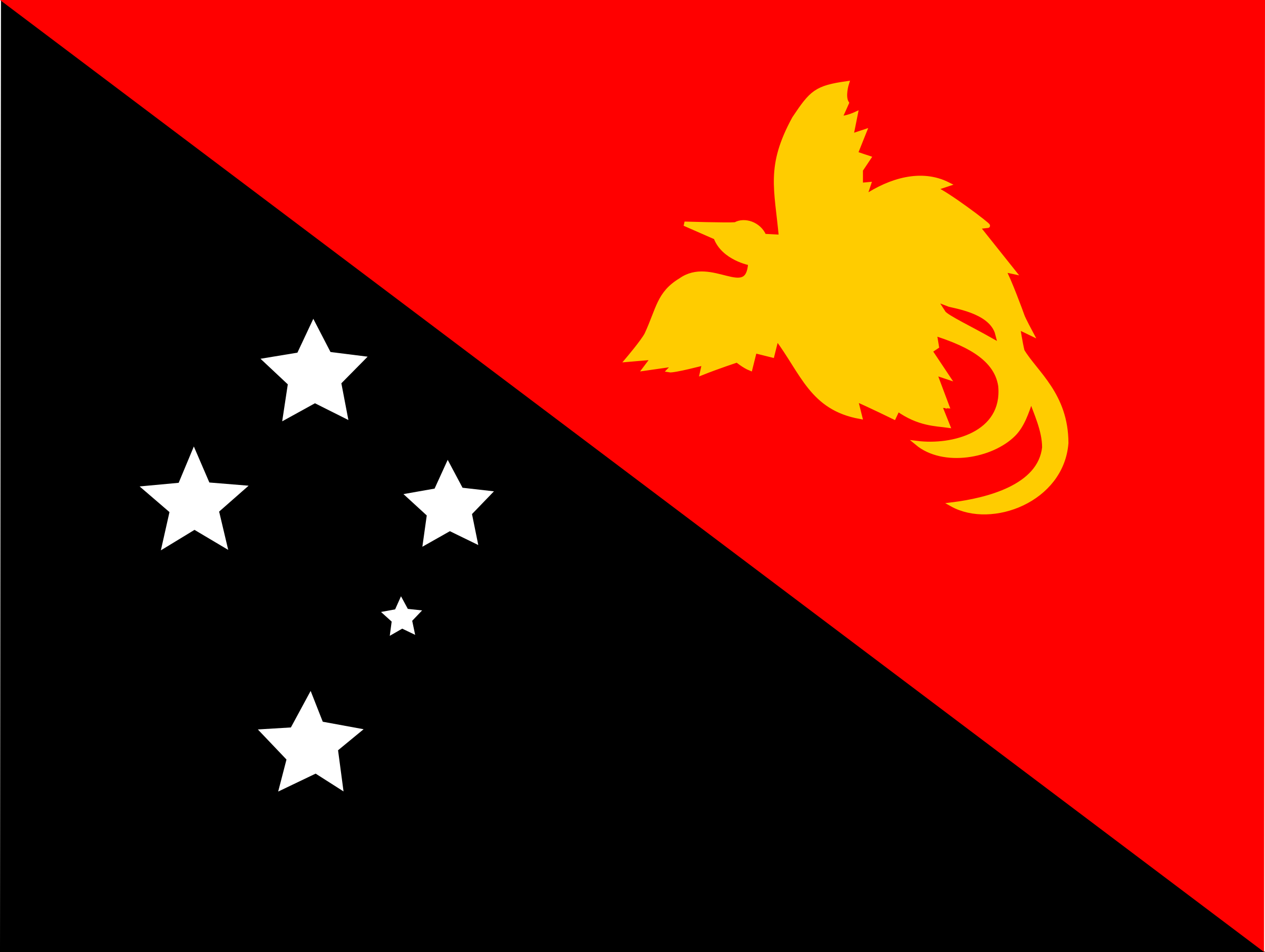 Flag of Papaua New Guinea by tobias