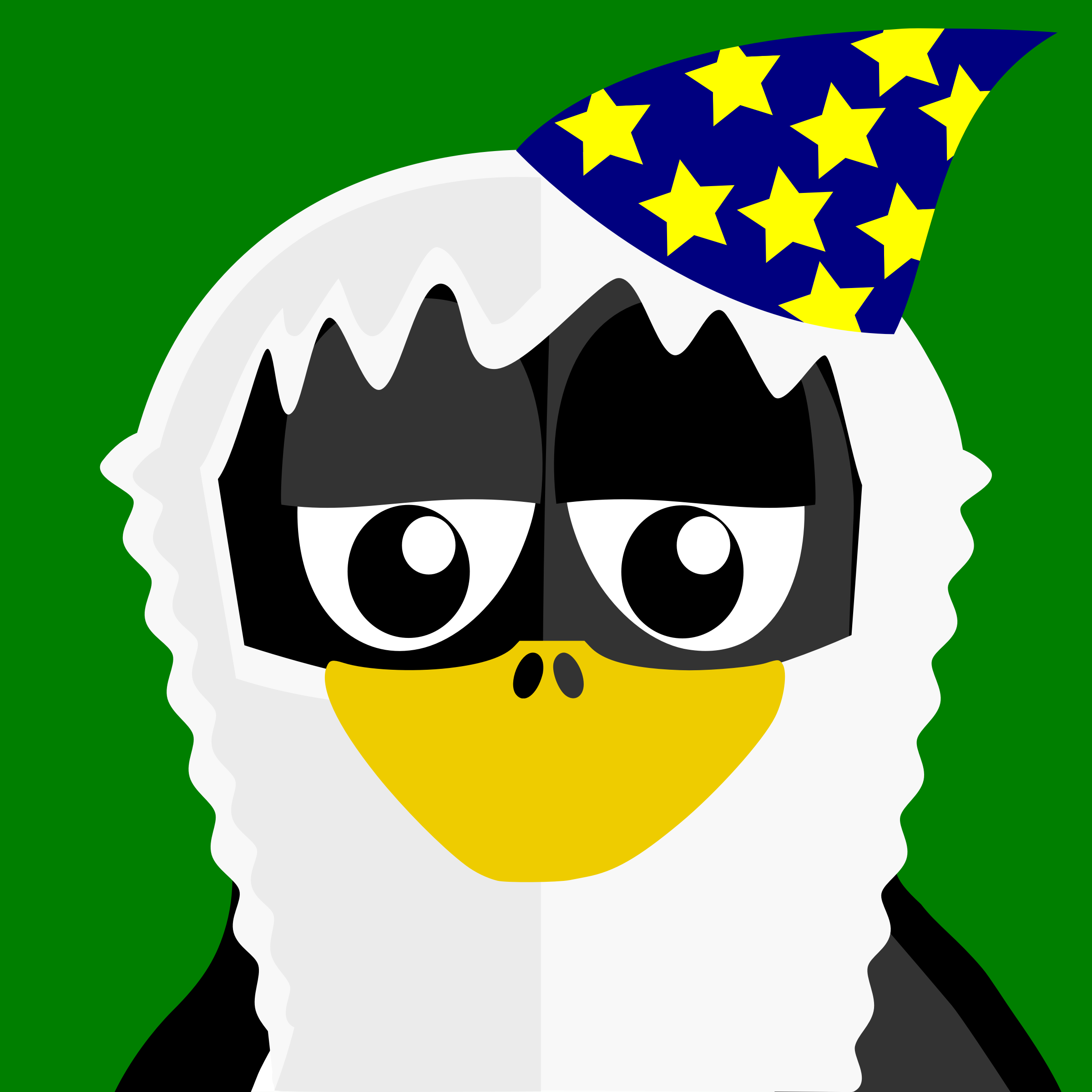 Wizard Penguin by BartM