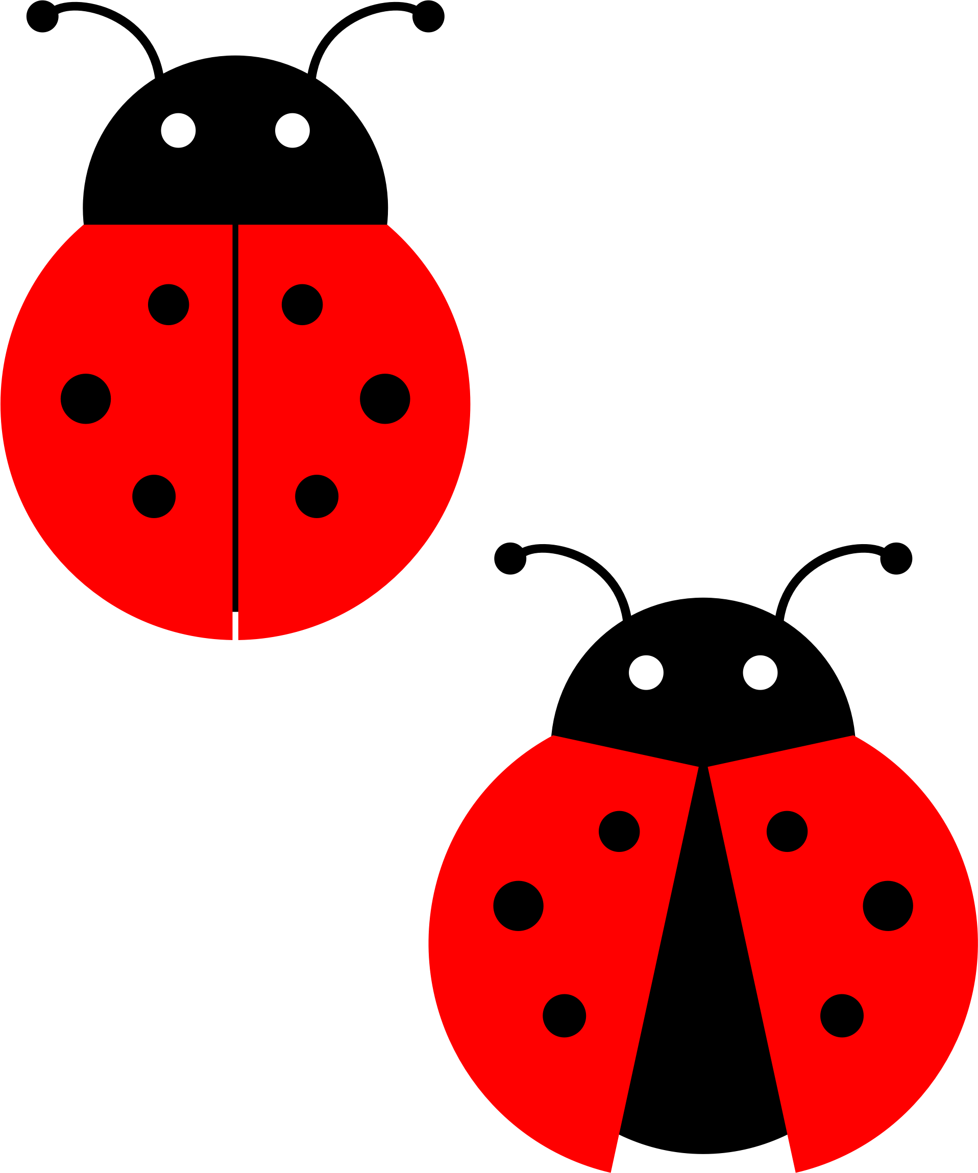 Ladybug by ziggystar