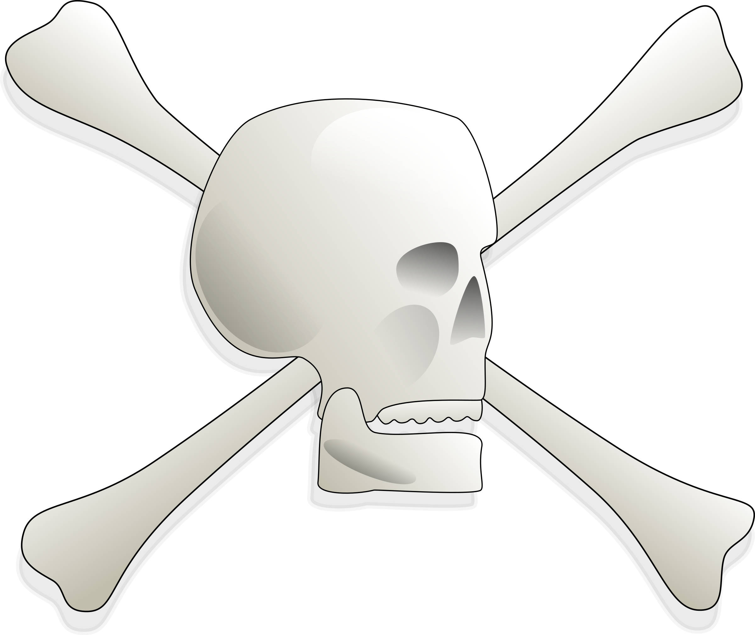 Skull and Bones by AJ