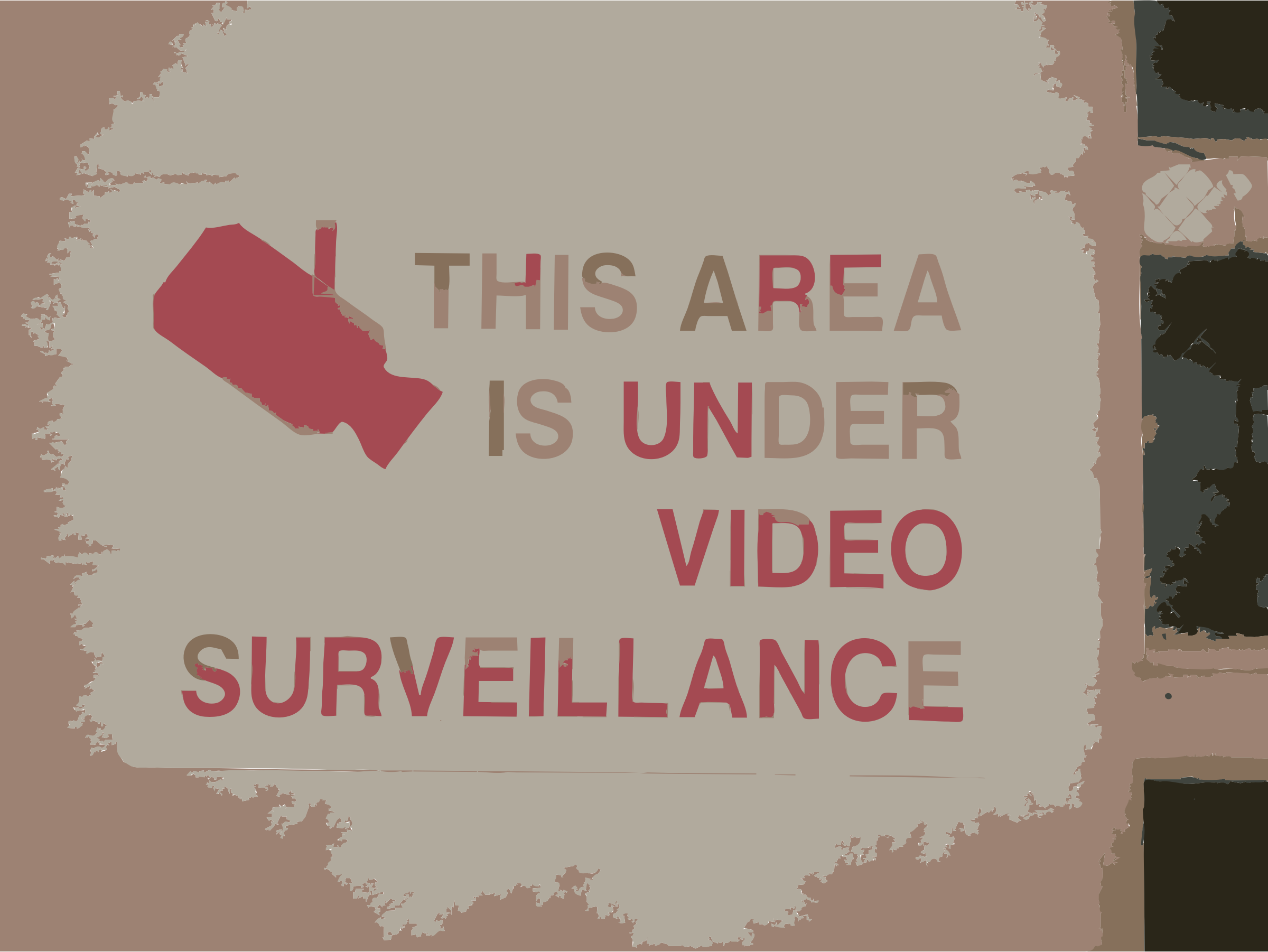 Video surveillance by rejon