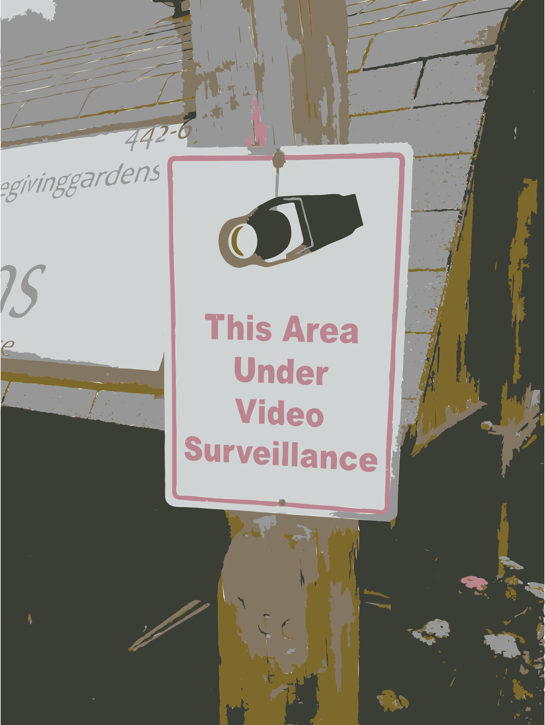 More video surveillance by rejon