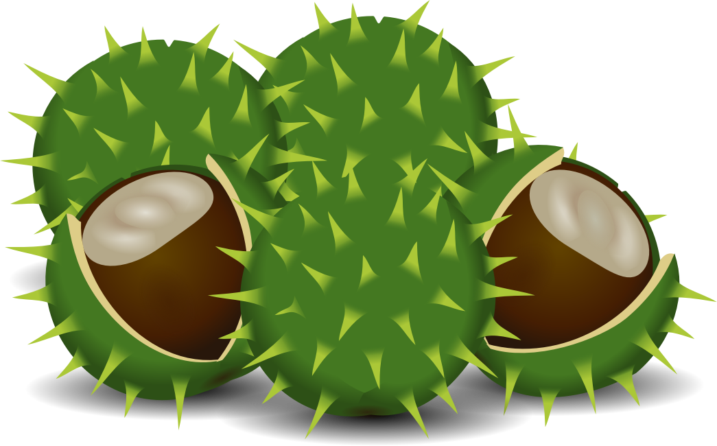 A couple of chestnuts by rdevries