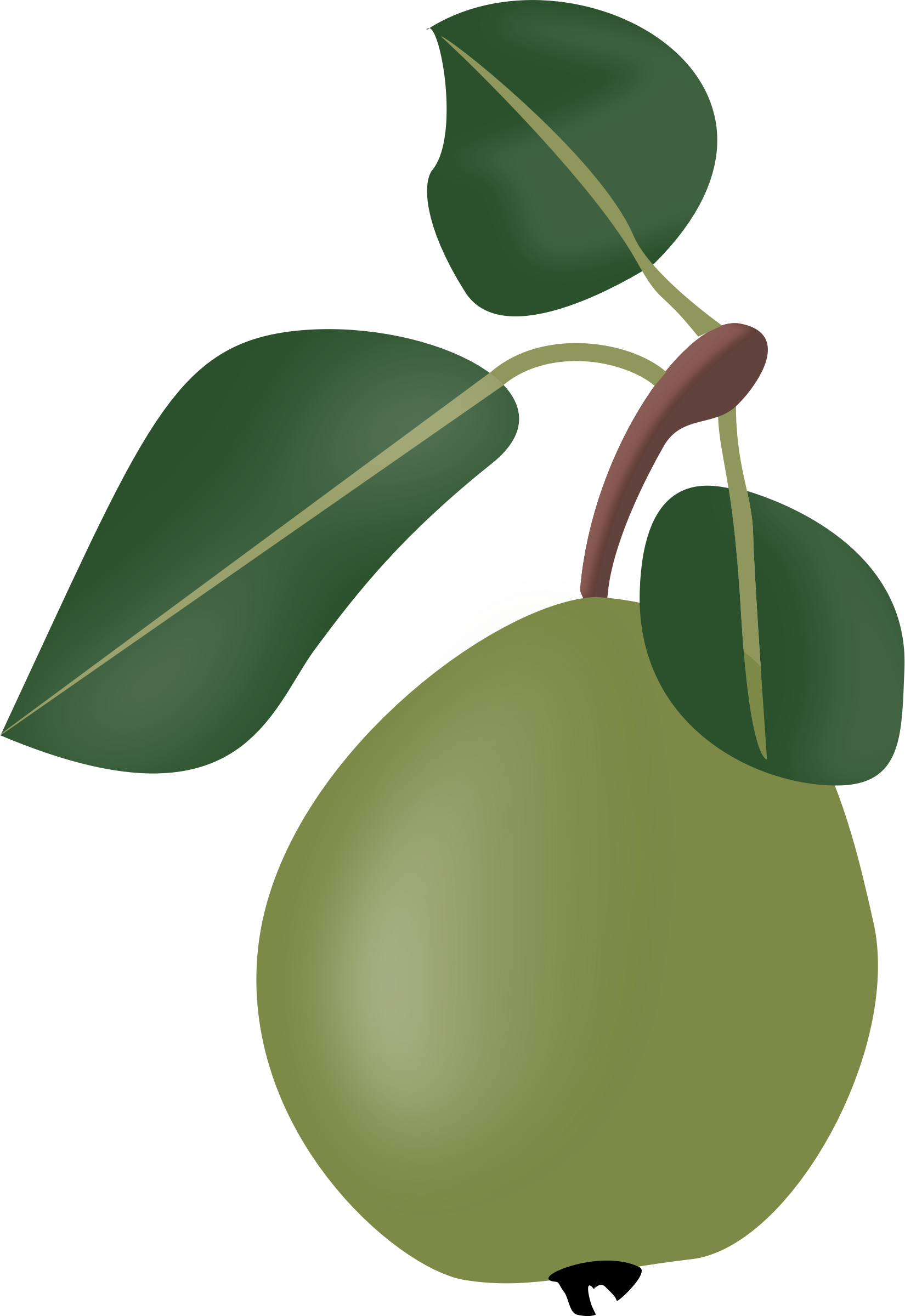 Stew pear with leafs by rdevries