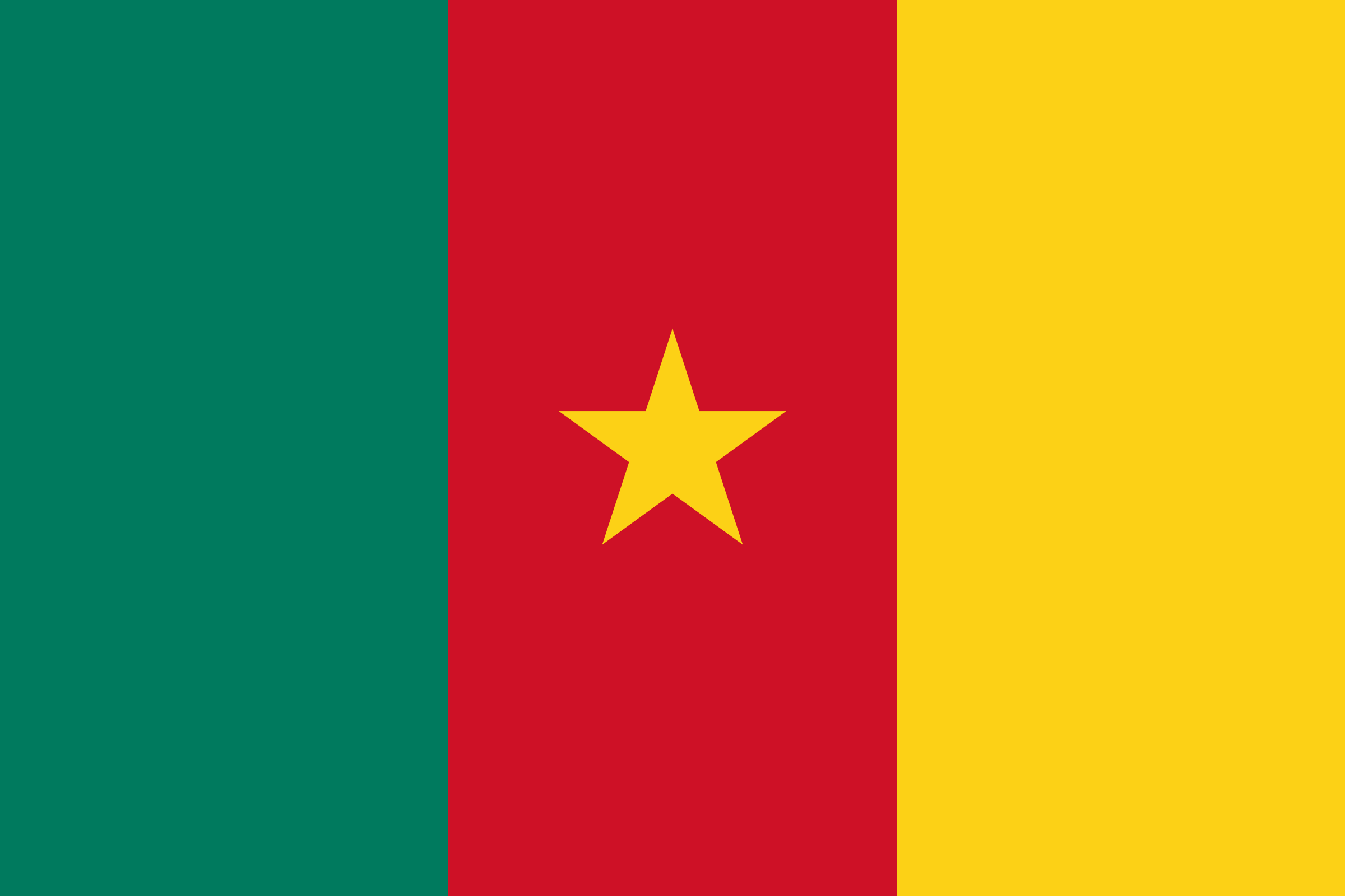 Flag of Cameroon by Rfc1394