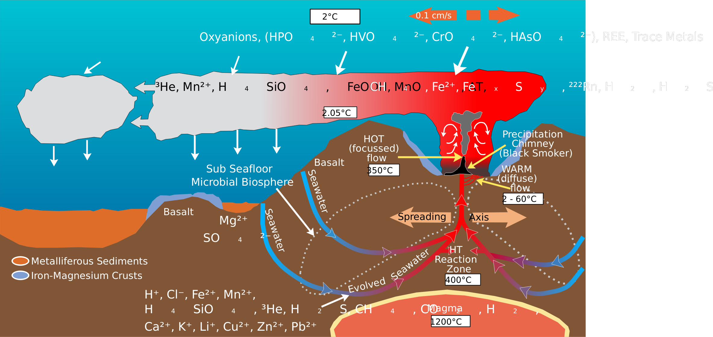 Deep Sea Vent Chemistry Diagram by Magirly
