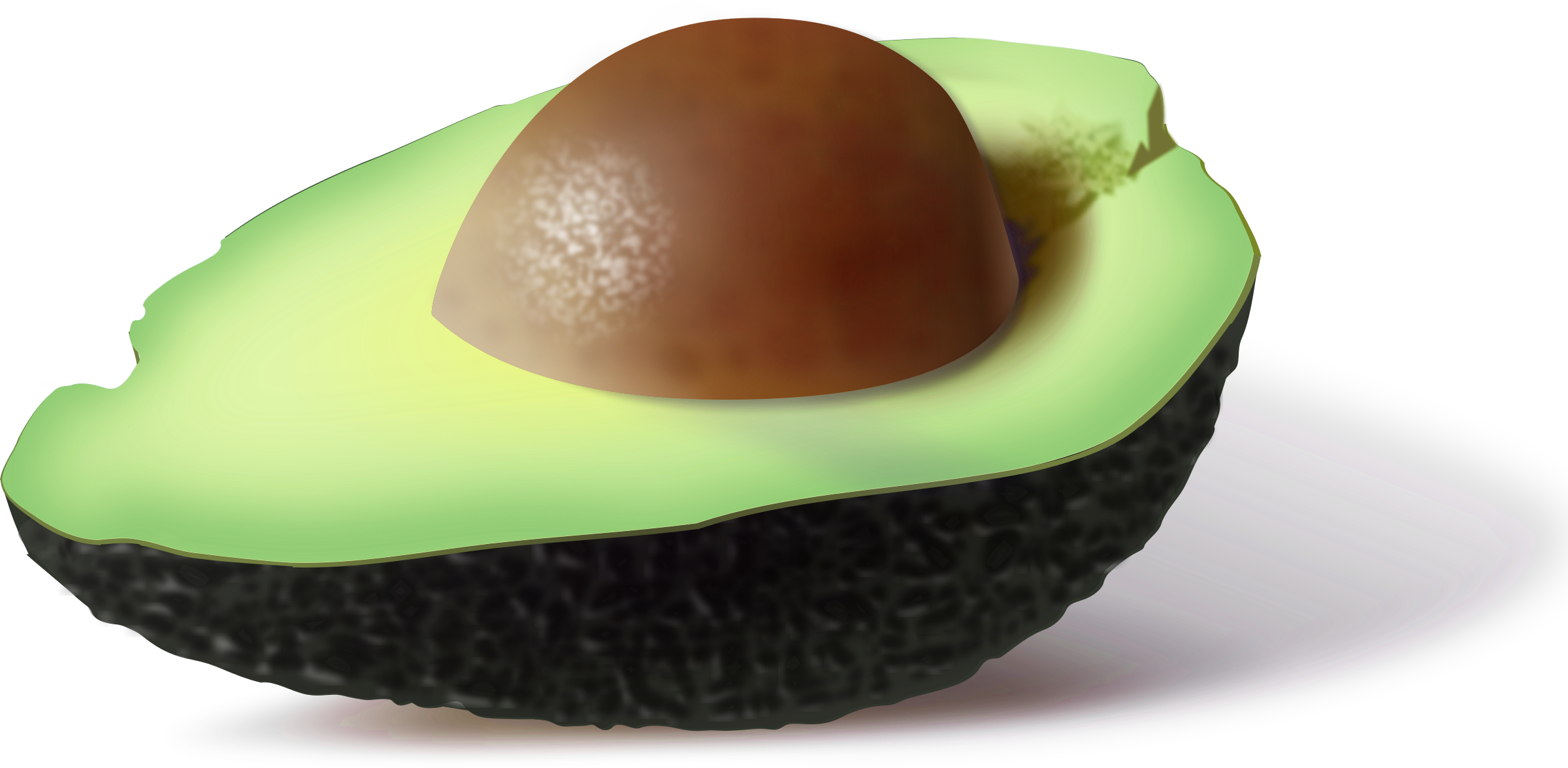 Avocado by pipo
