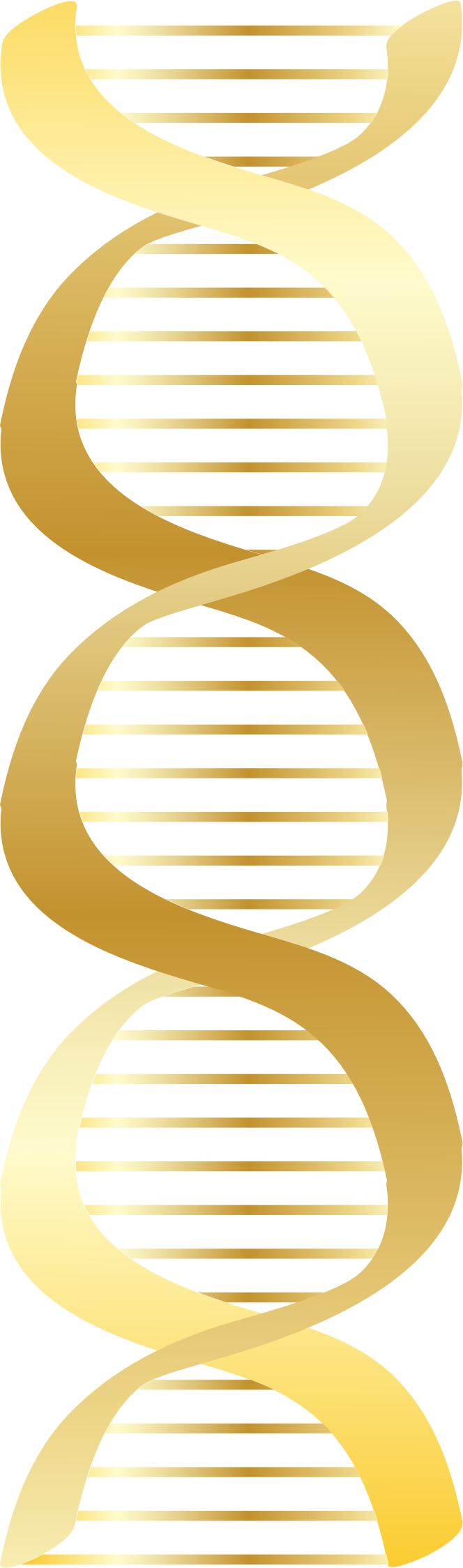 Gold DNA icon by jhnri4