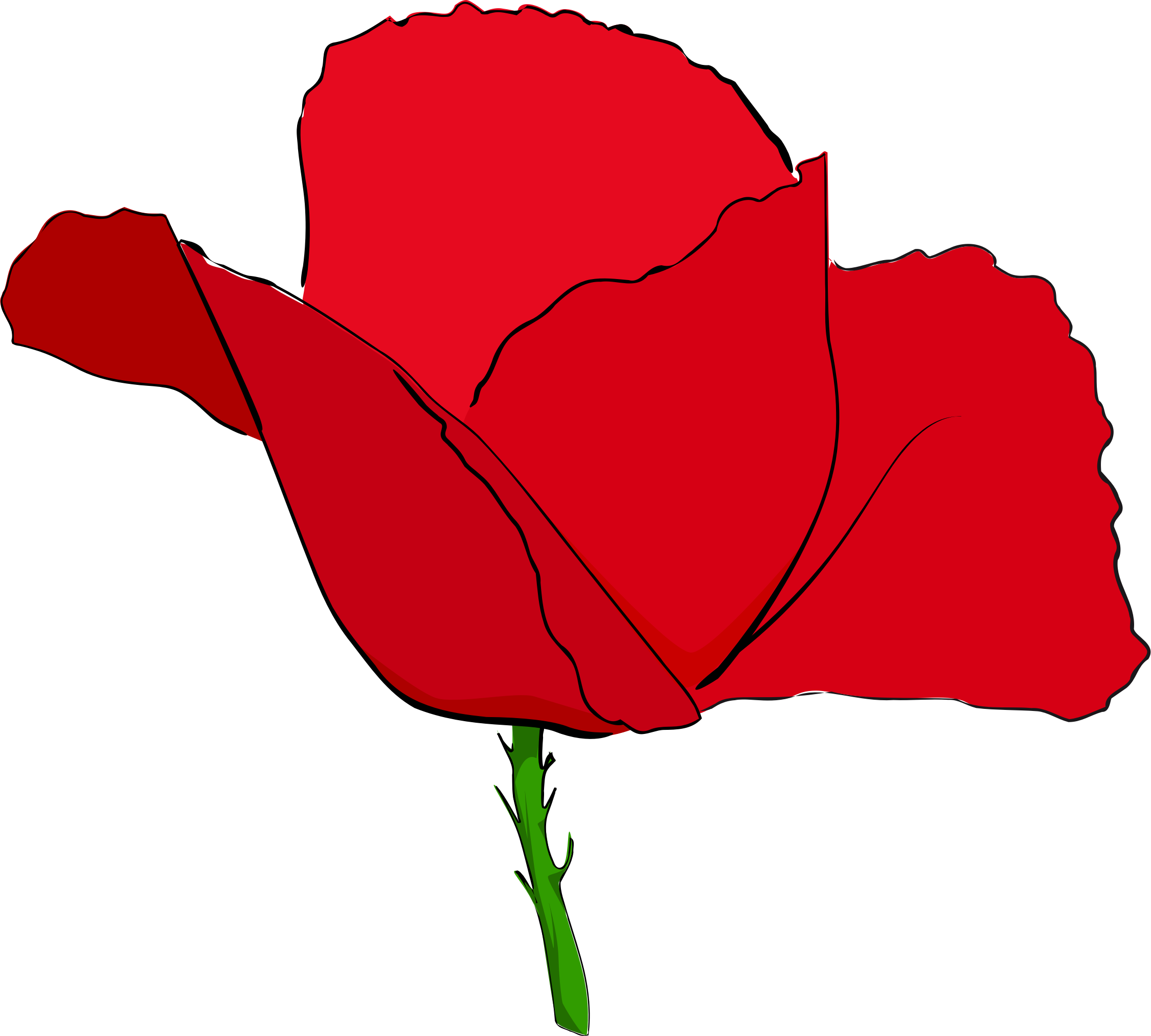 Coquelicot rouge - Red poppy by enolynn