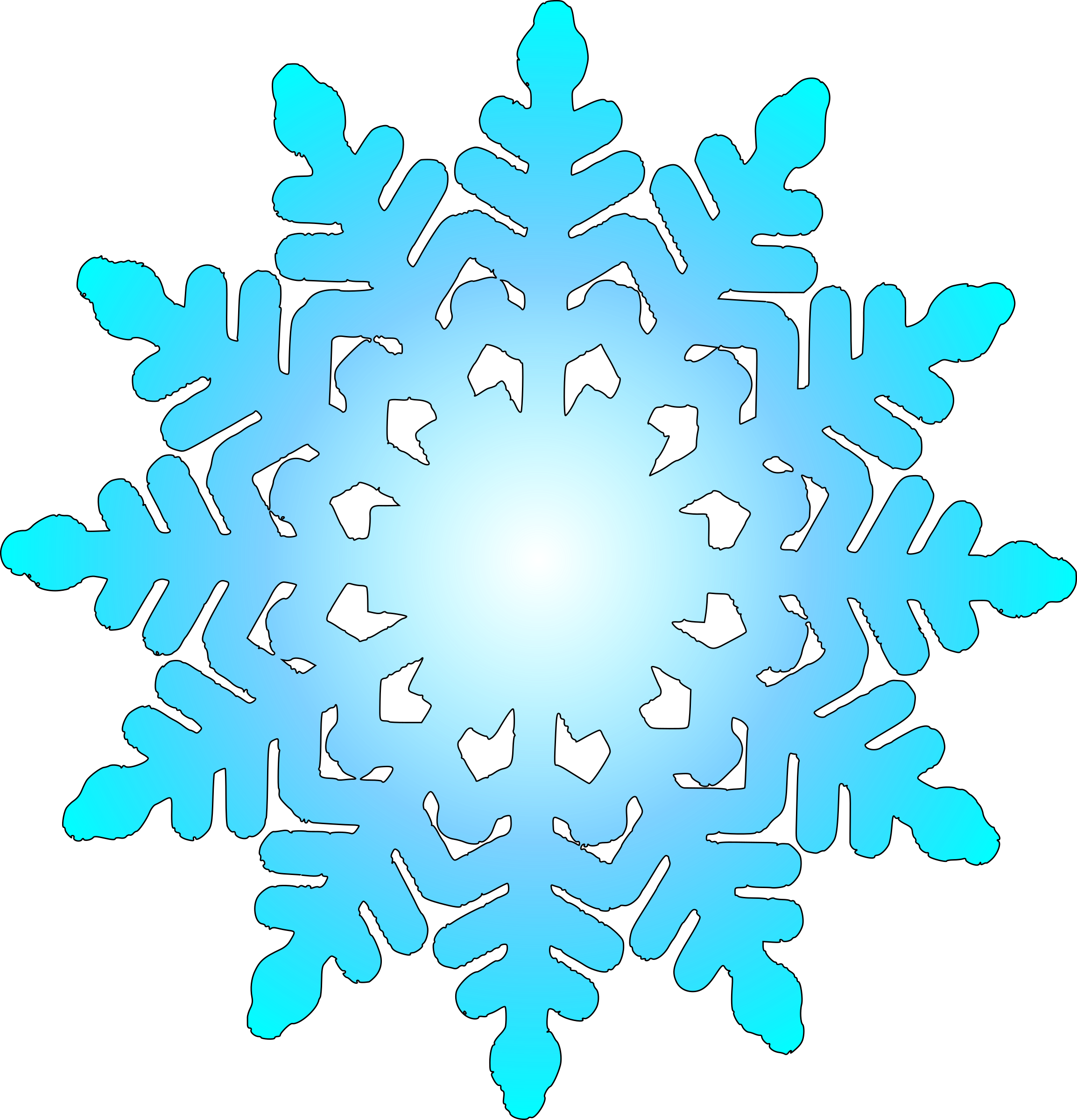 snow flake 1 by zecas