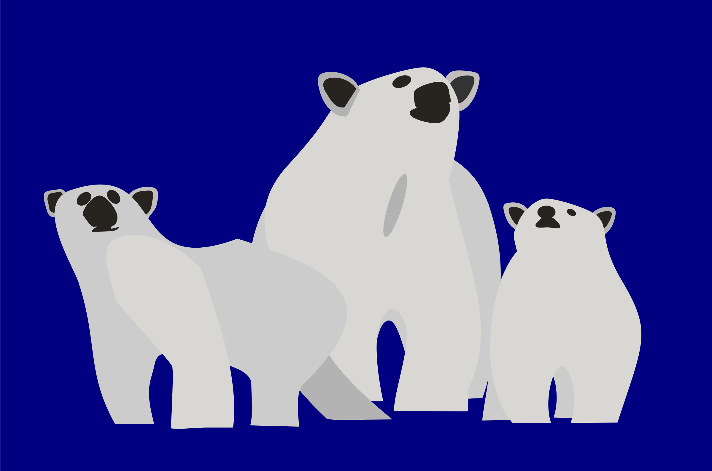 3 polarbears by user unknown