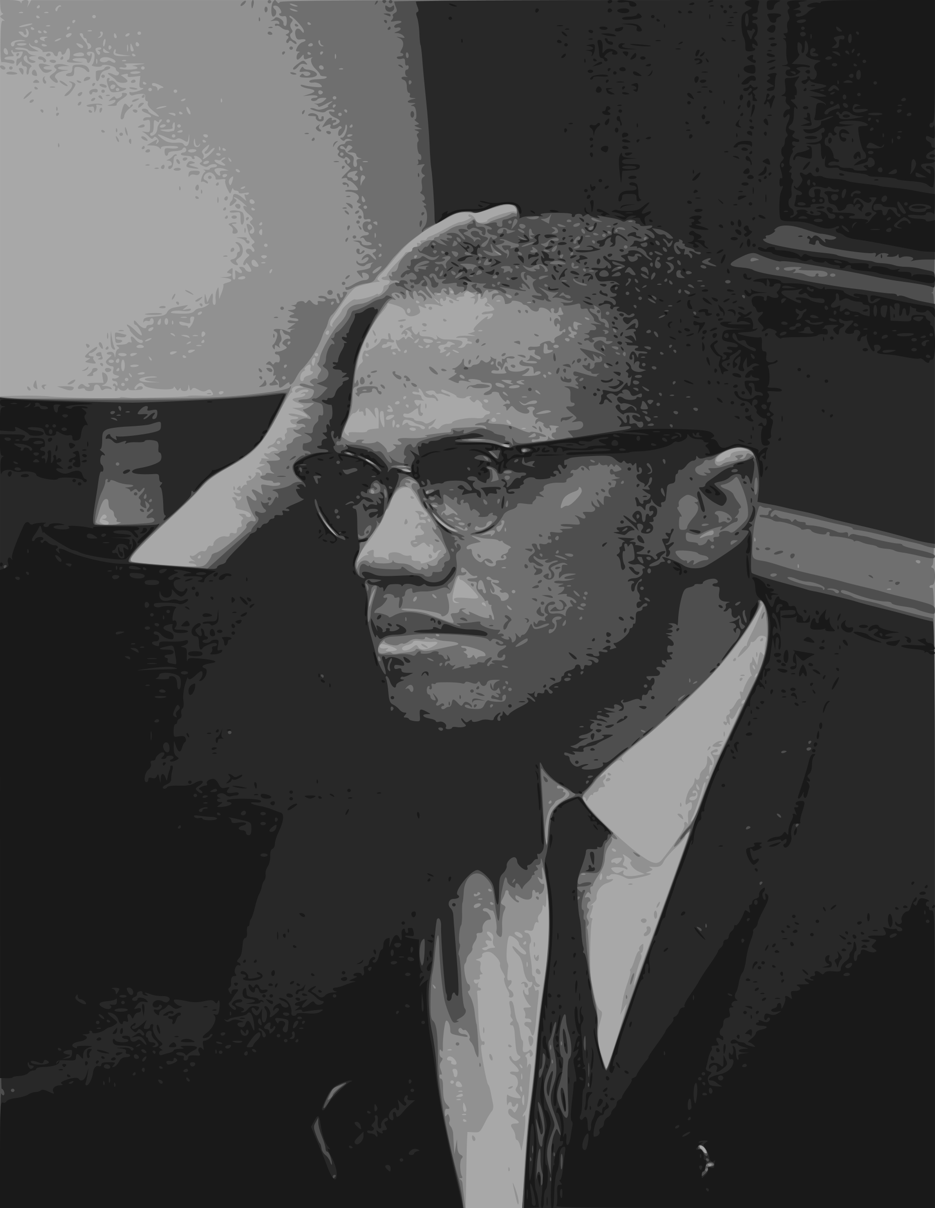 Malcolm X - Face by j4p4n