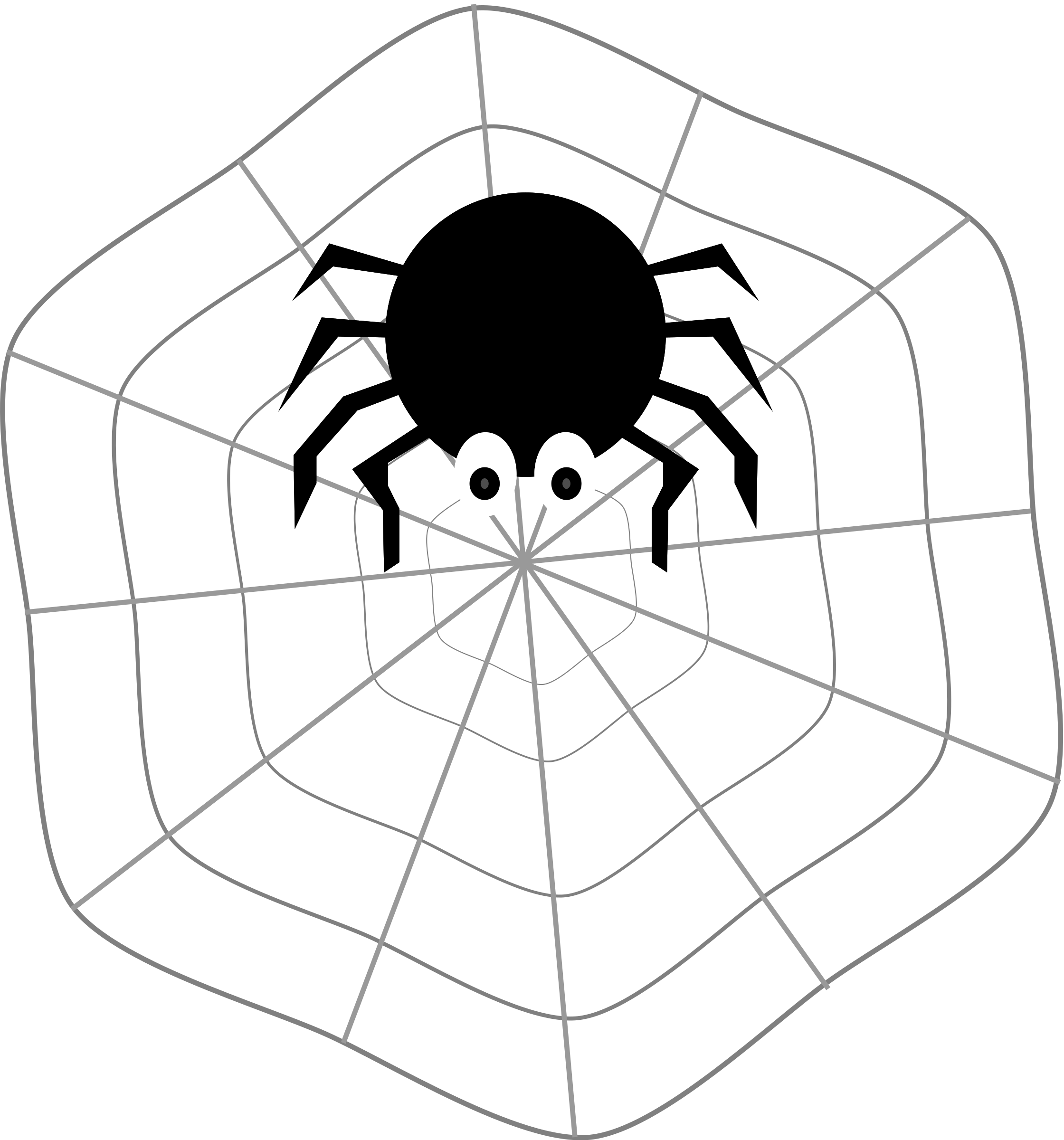 Spider on Web by matheod