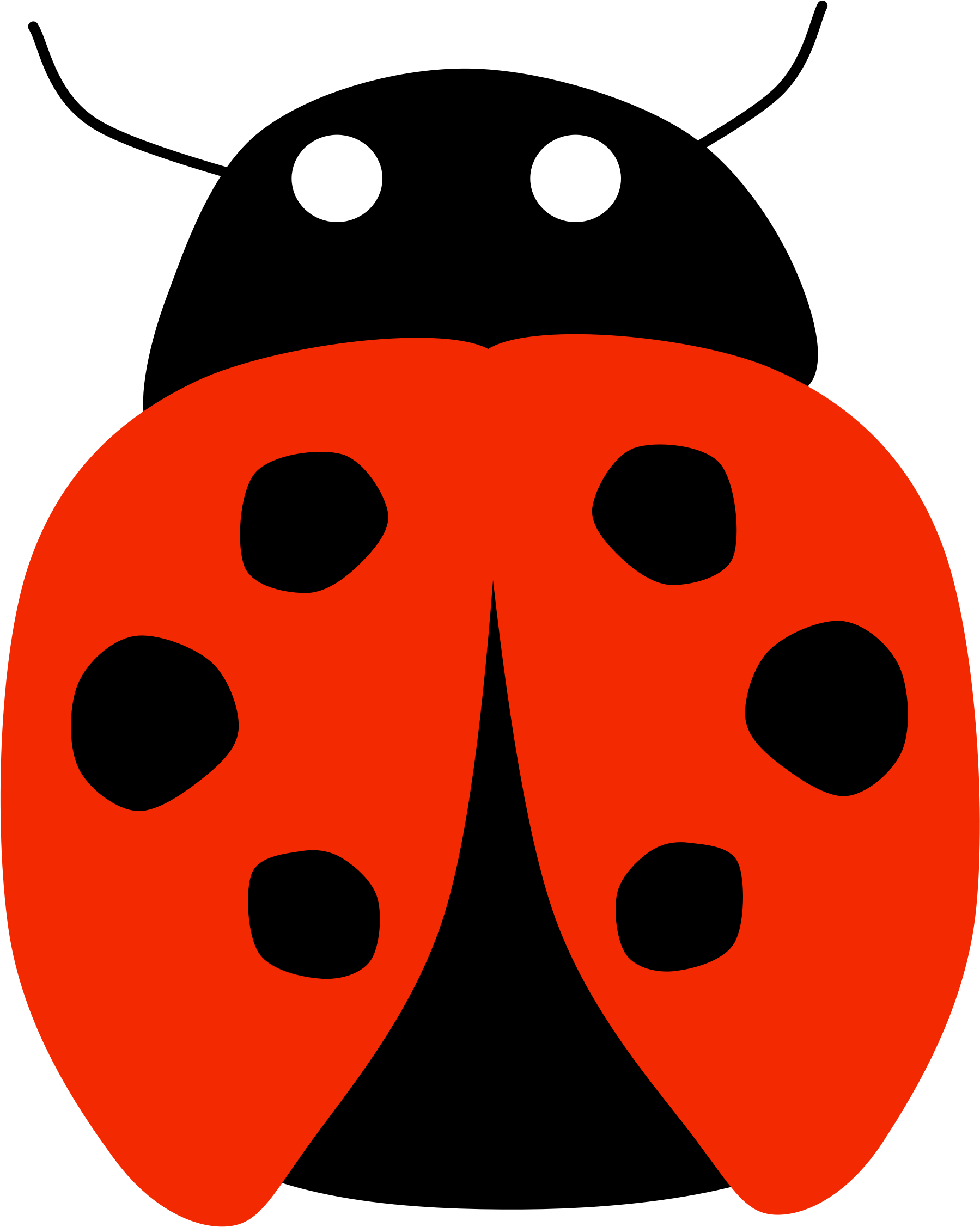 Lady Bug by Scout