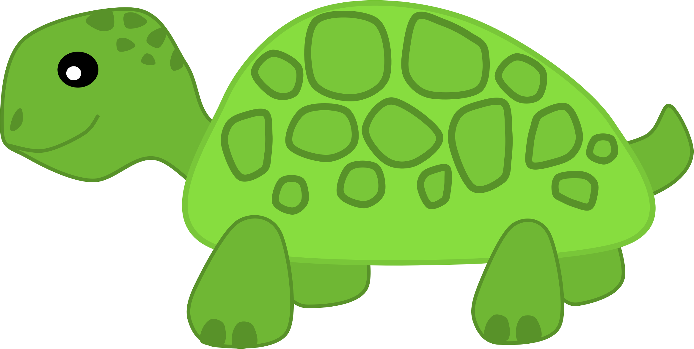 Turtle by Scout