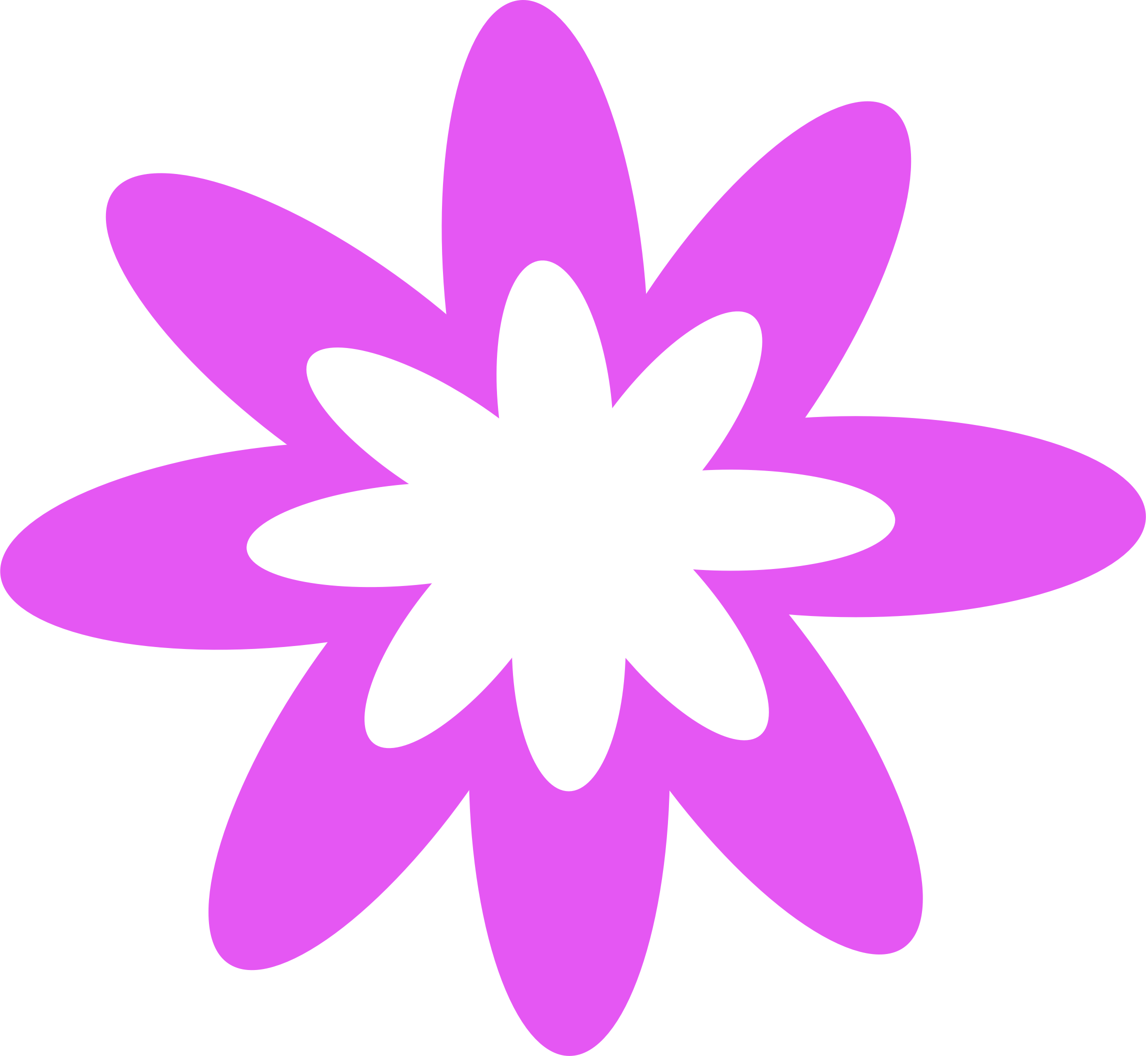 Purple Burst Flower by Scout