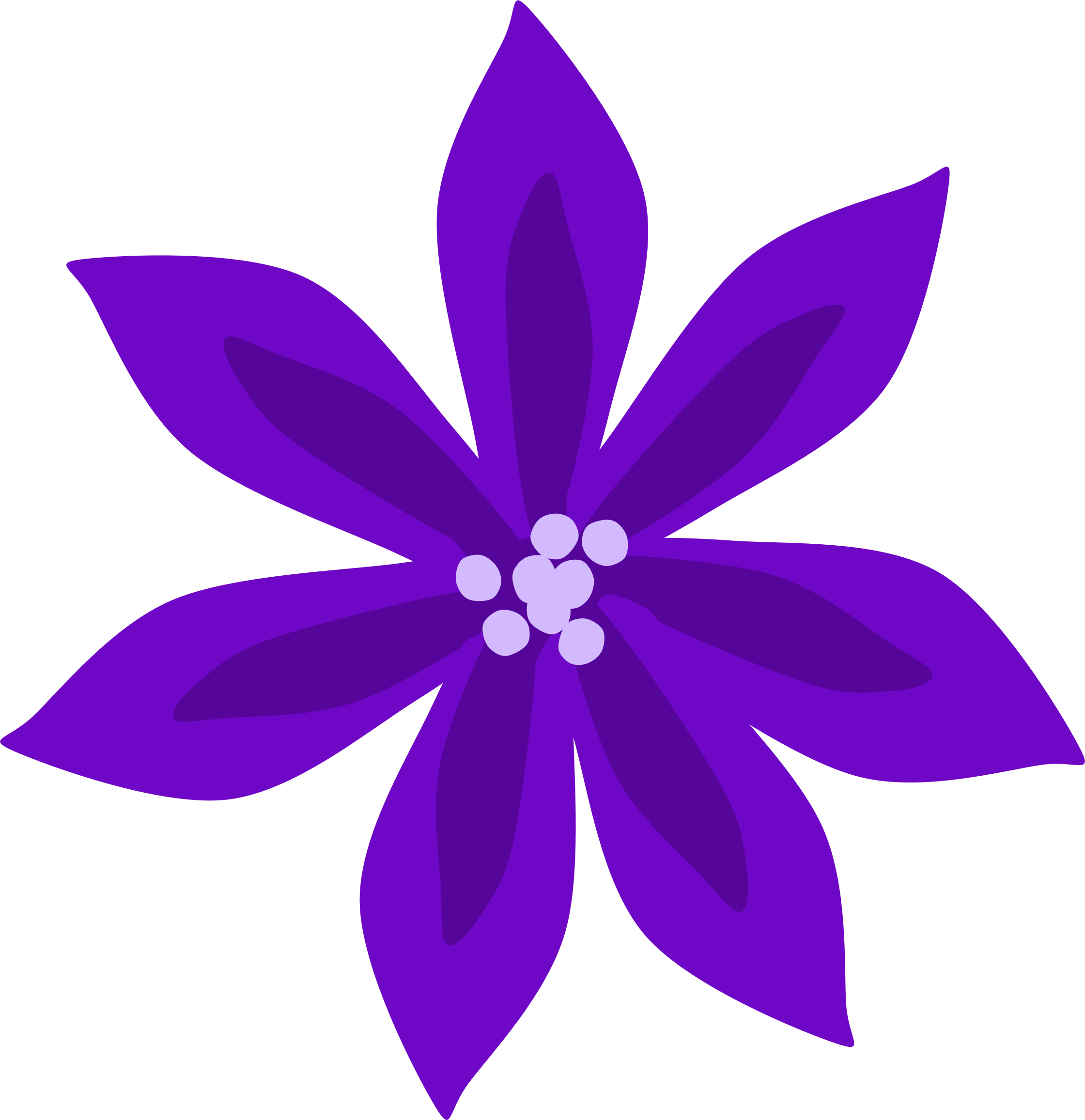 Purple Lily by Scout