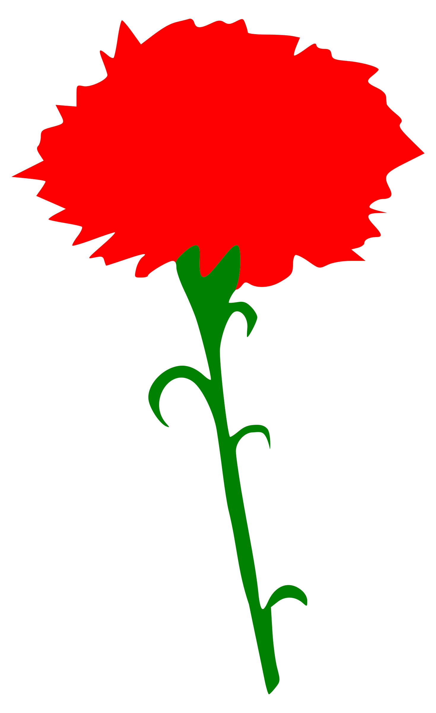 International Working Women's Day - Carnation by worker