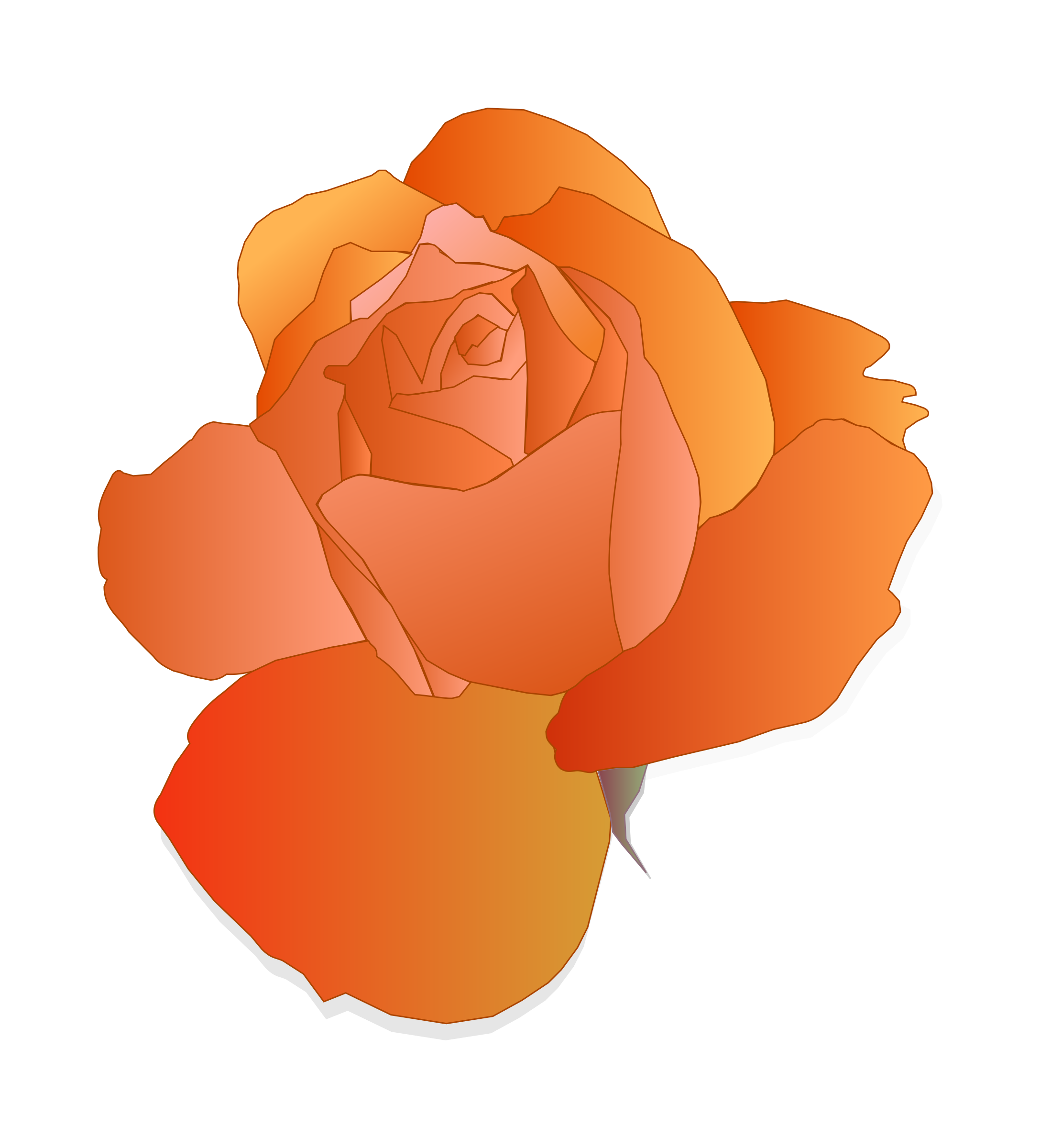 Orange Rose by mirys