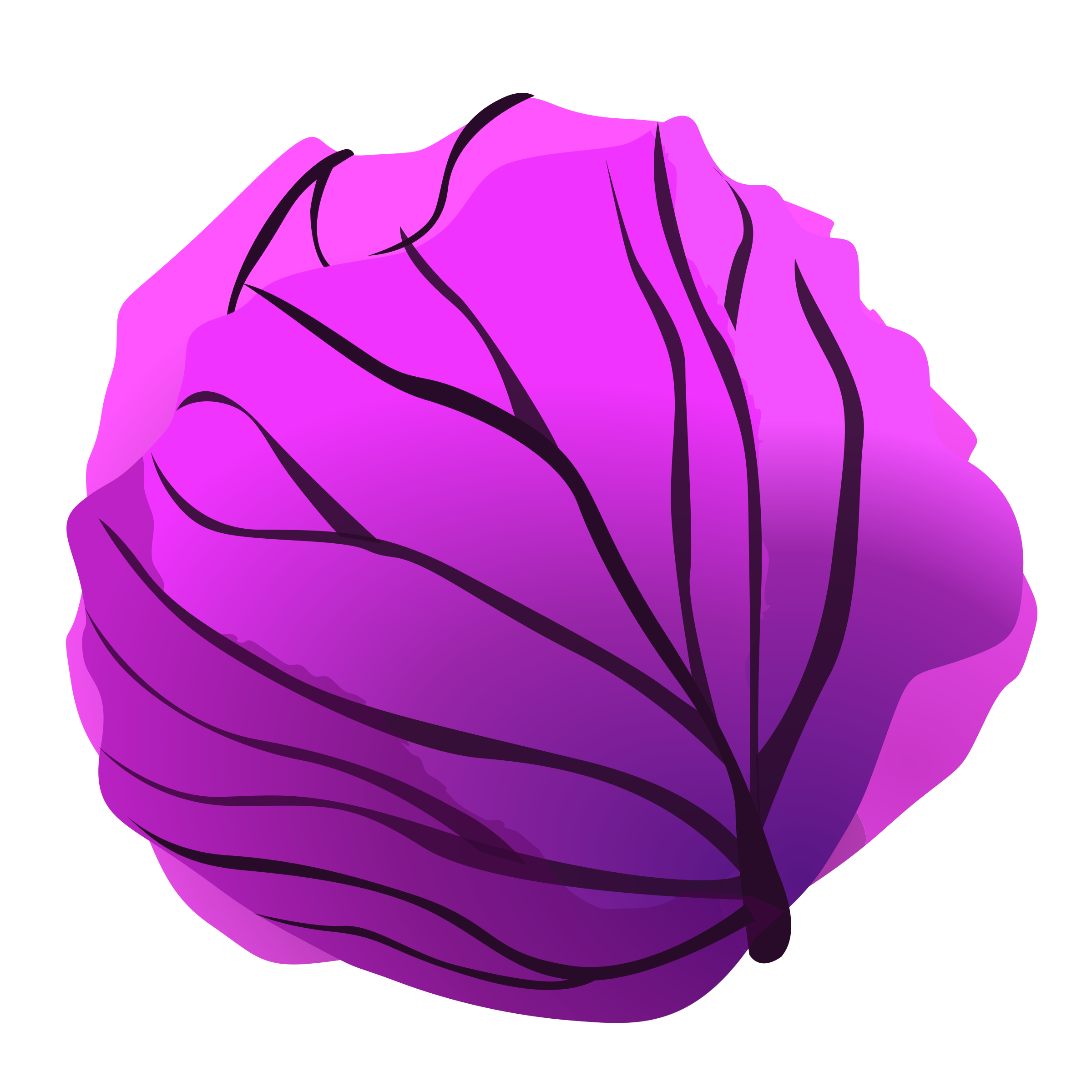 red cabbage by aidaivars
