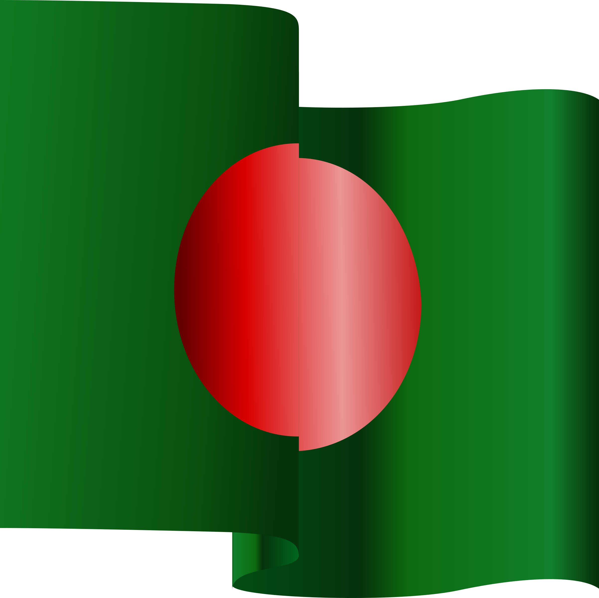 Wavy Bangladesh Flag  by bdtiger2000