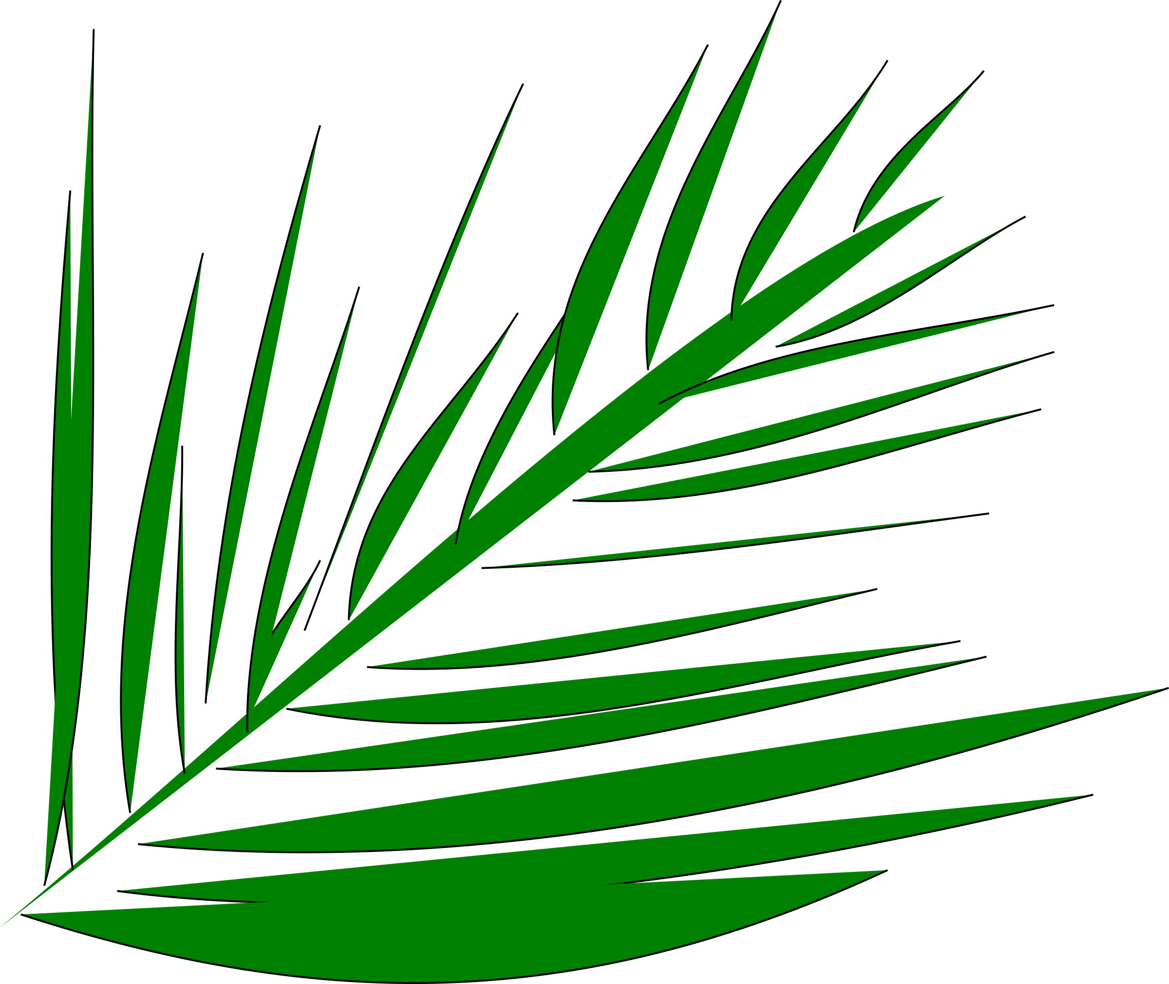 Palmleaf by spevi