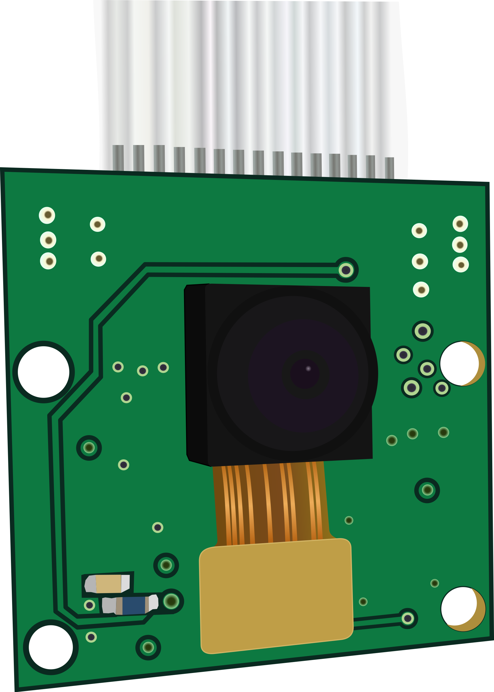 Raspberry Pi Camera by cyberscooty