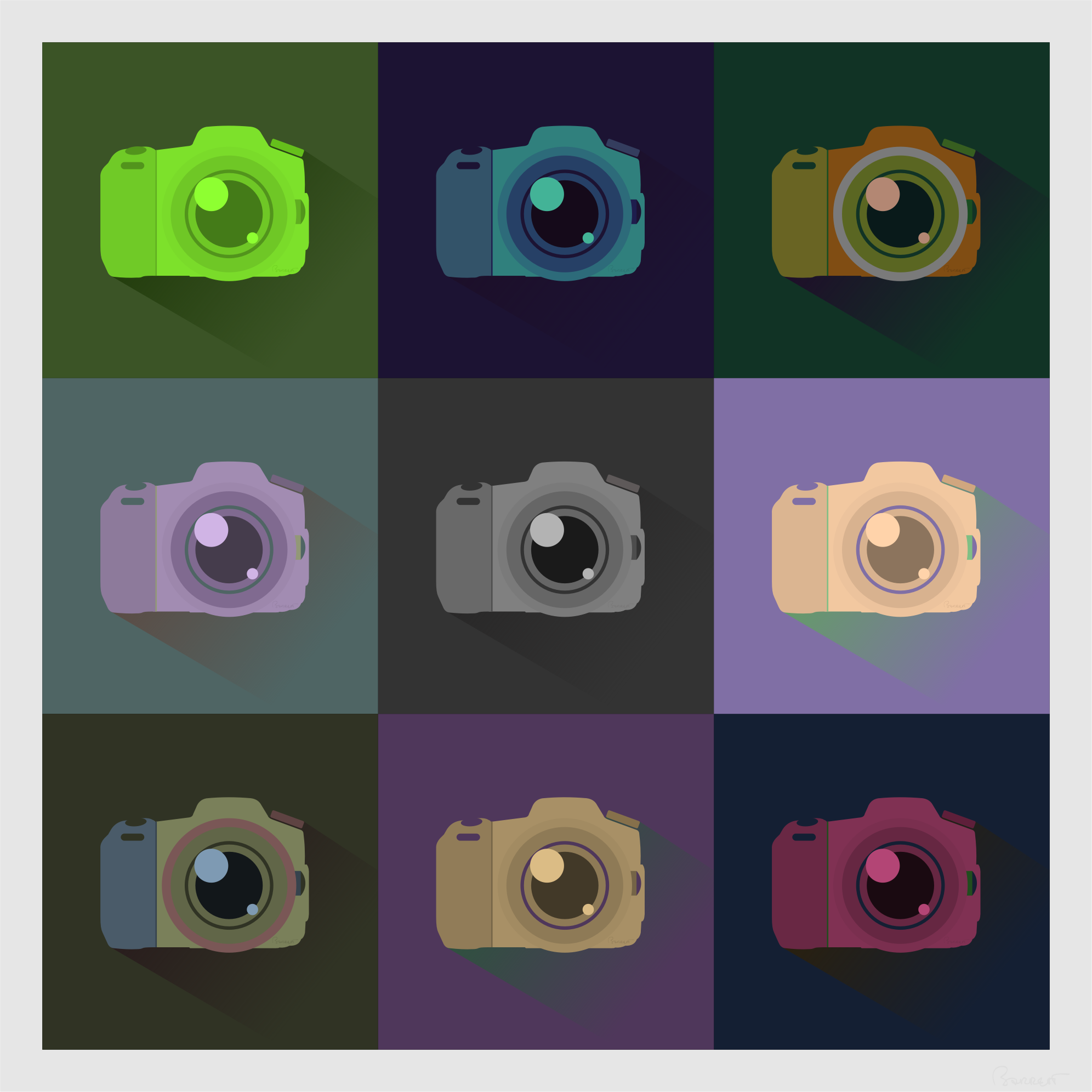 SLR Digital Camera Icons Color Study by barrettward