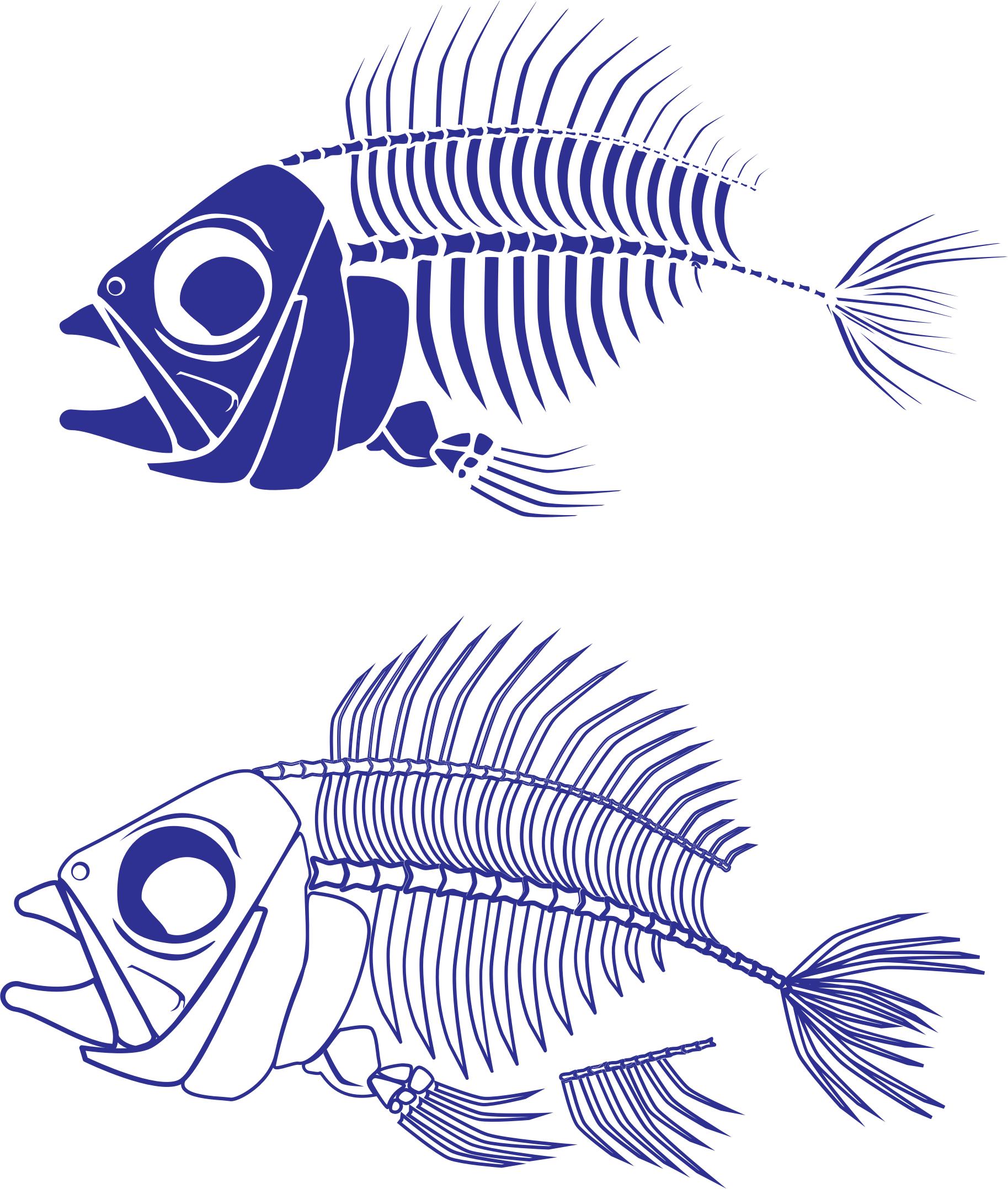 Fish Skeleton by ChromaRush