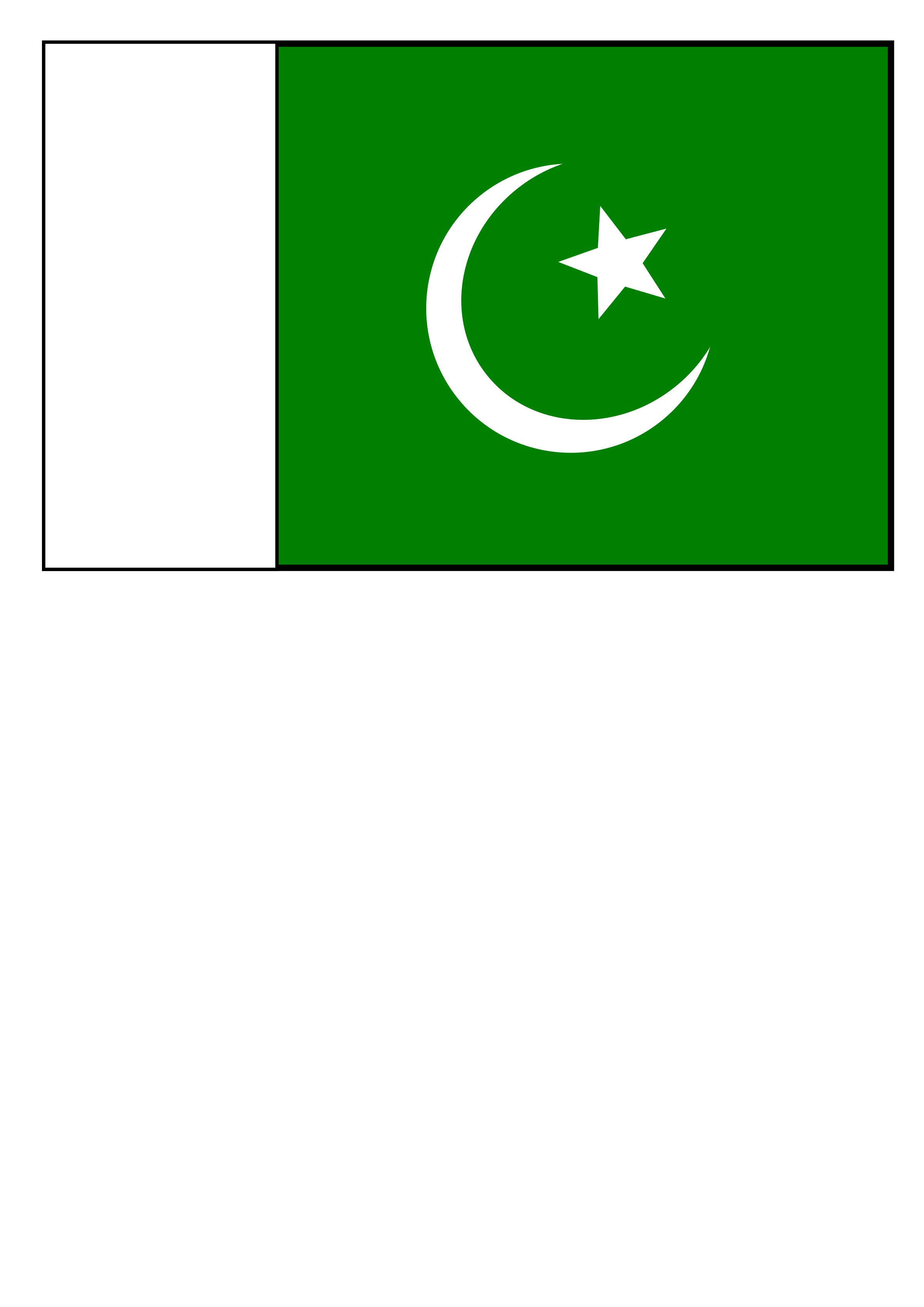 Flag of Pakistan by taughtware