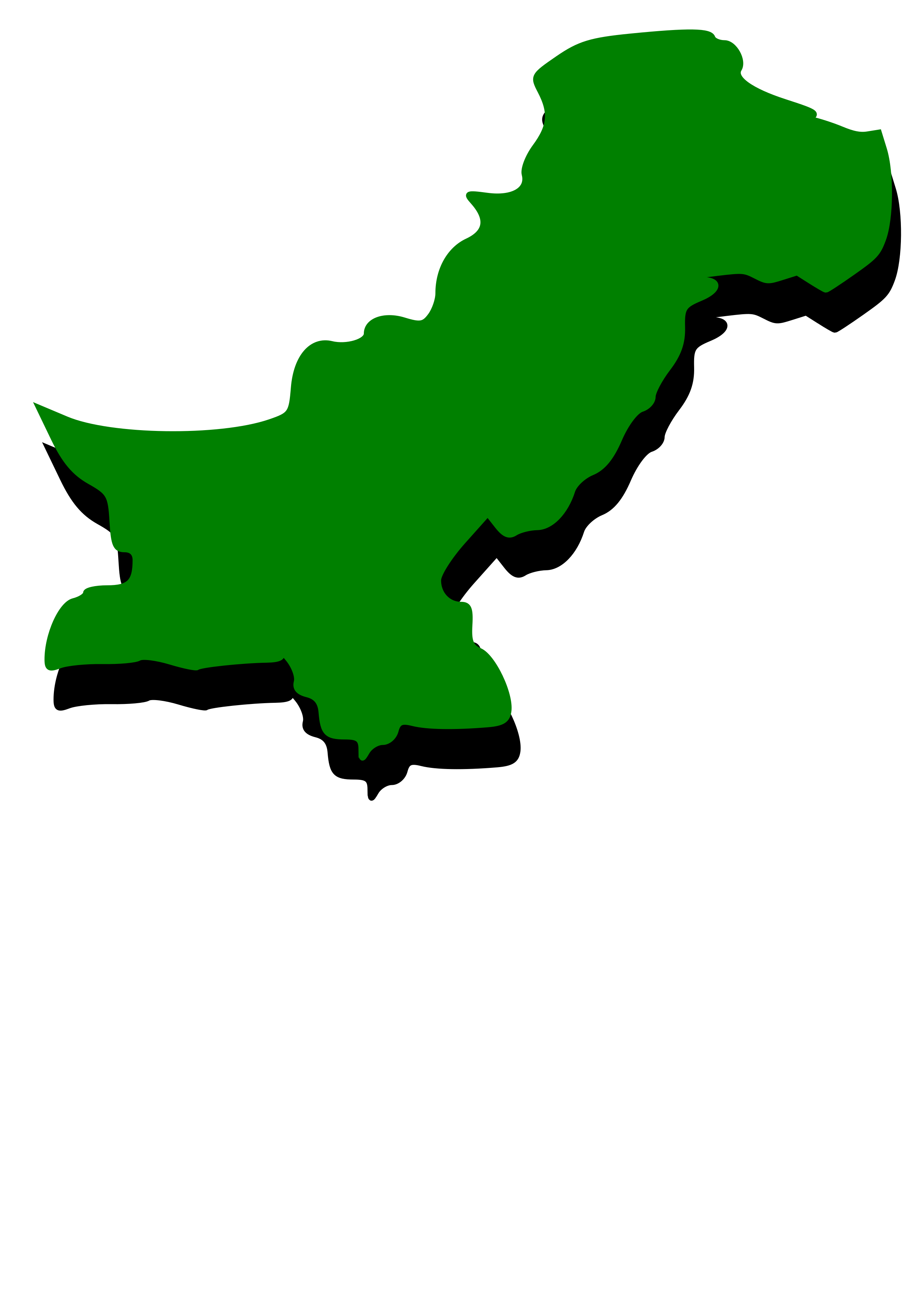 Embossed outline map of Pakistan with green fill by taughtware