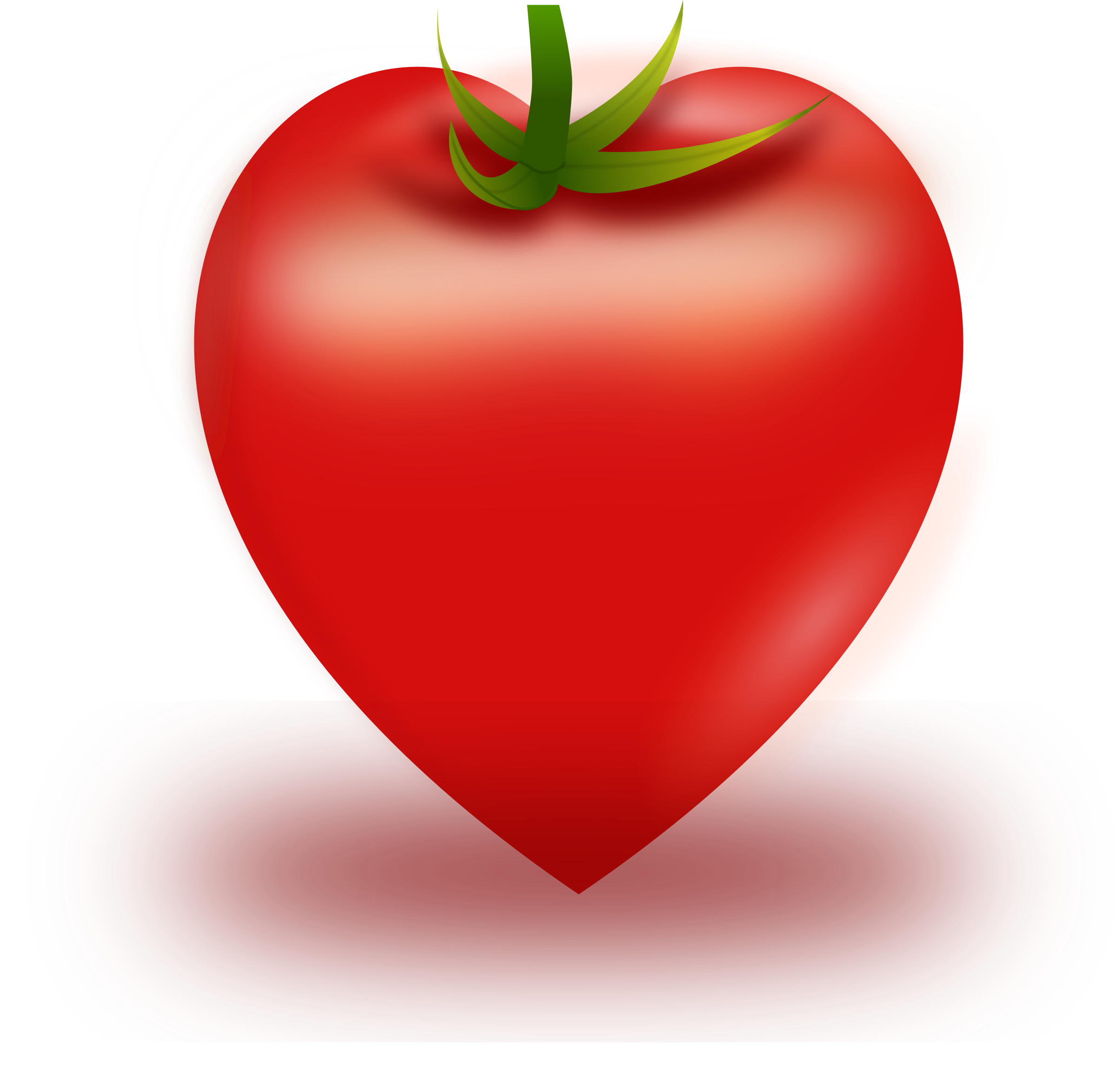 Vector Heart Tomato by mikjay