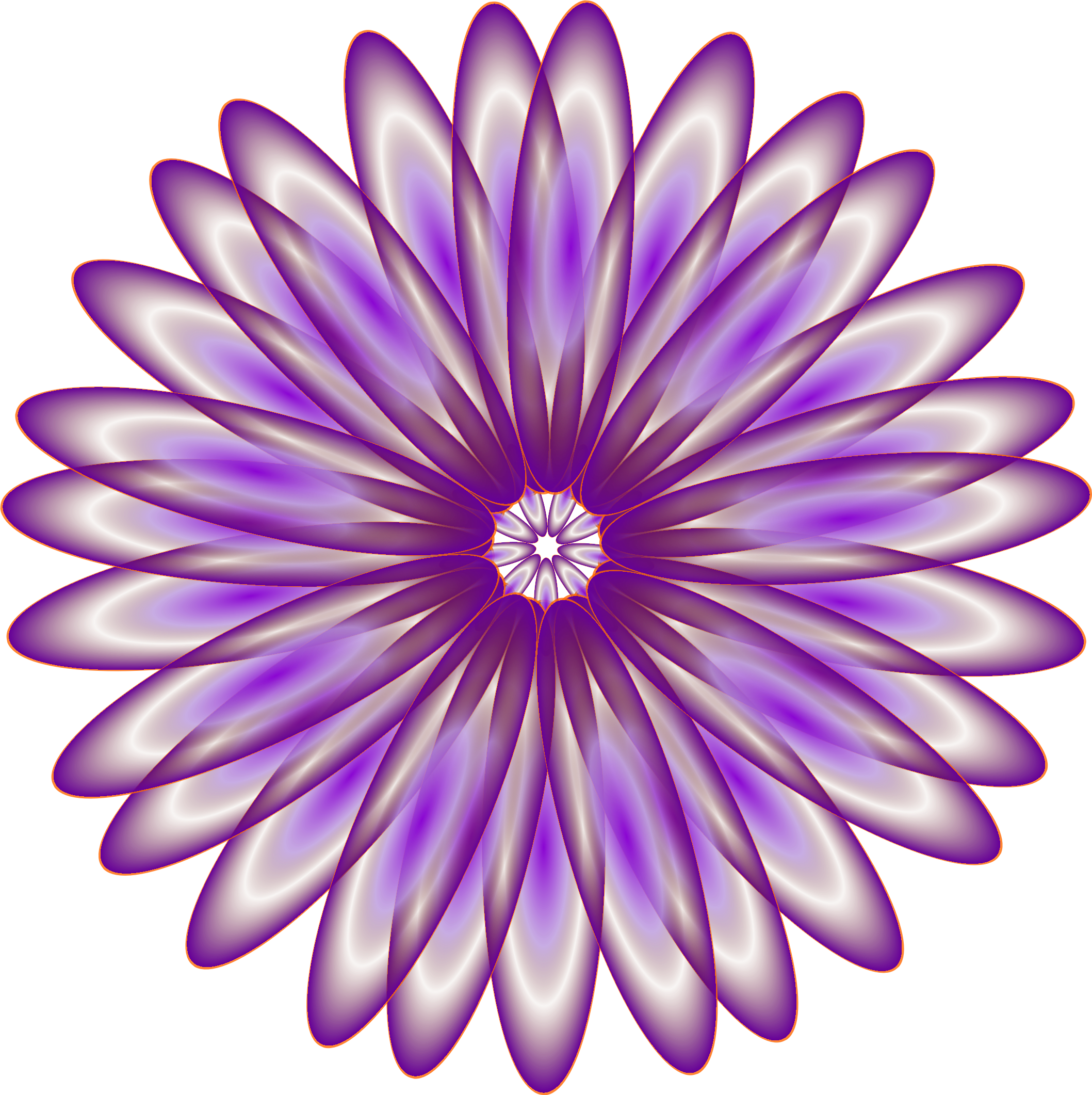 Purple Daisy by genolve