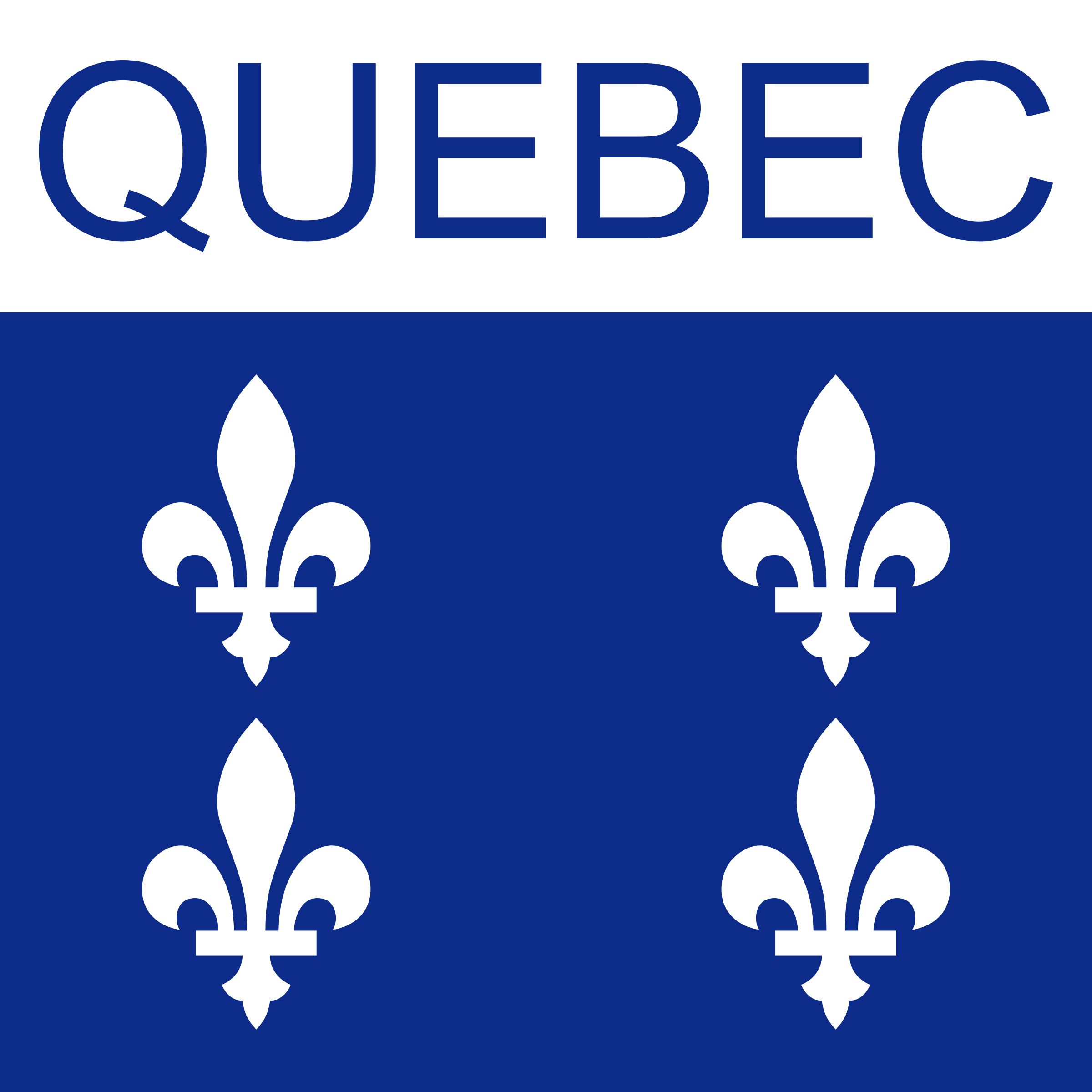 Quebec Icon by Dustwin