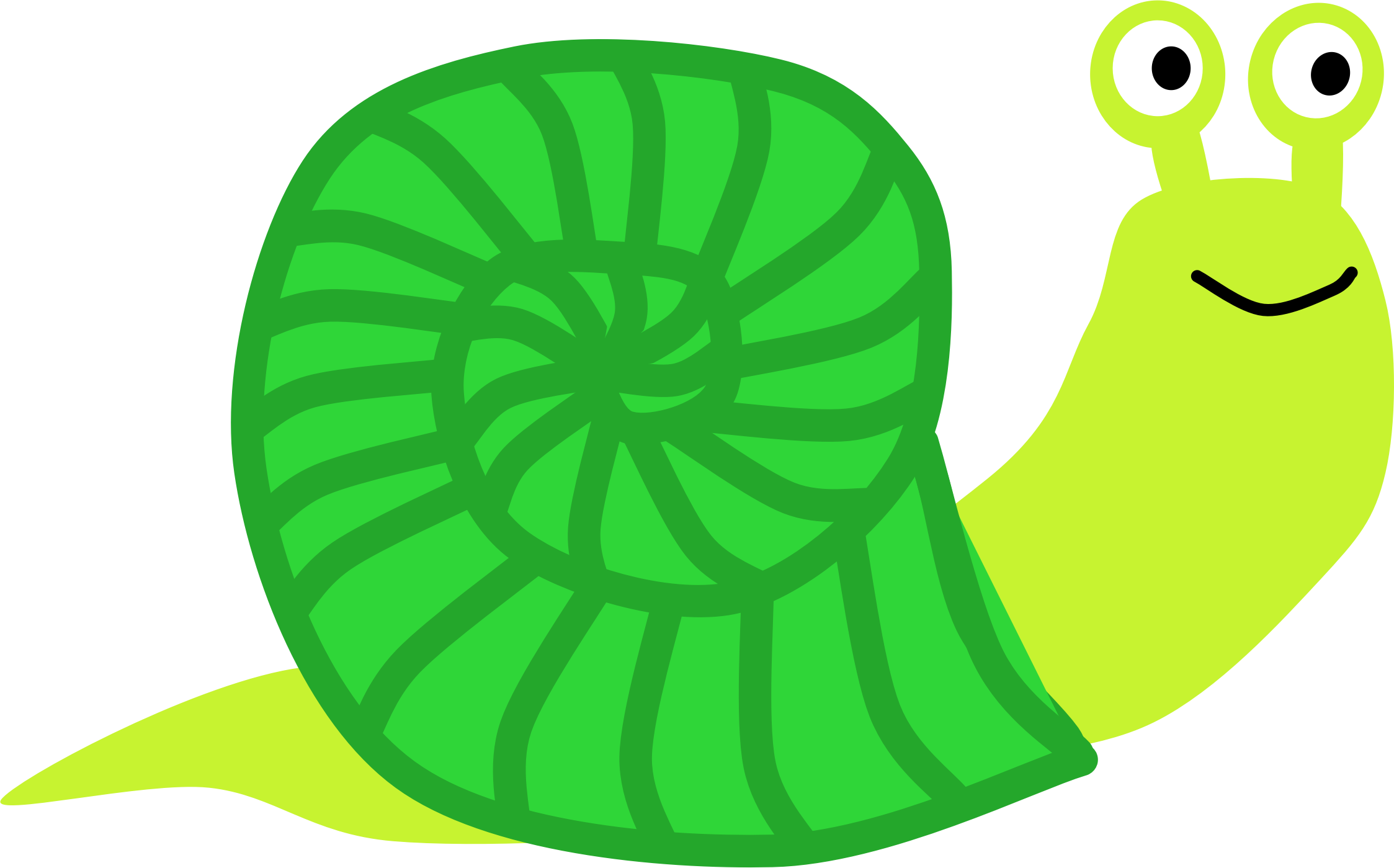 Snail by Scout