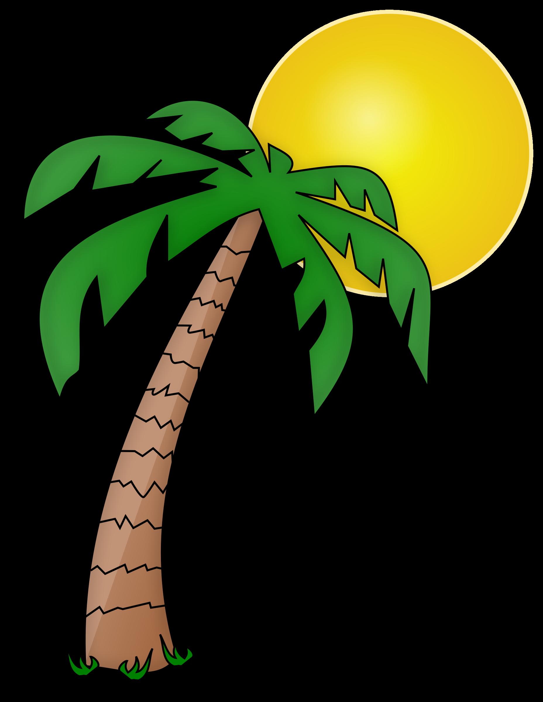 clipart palmier et soleil