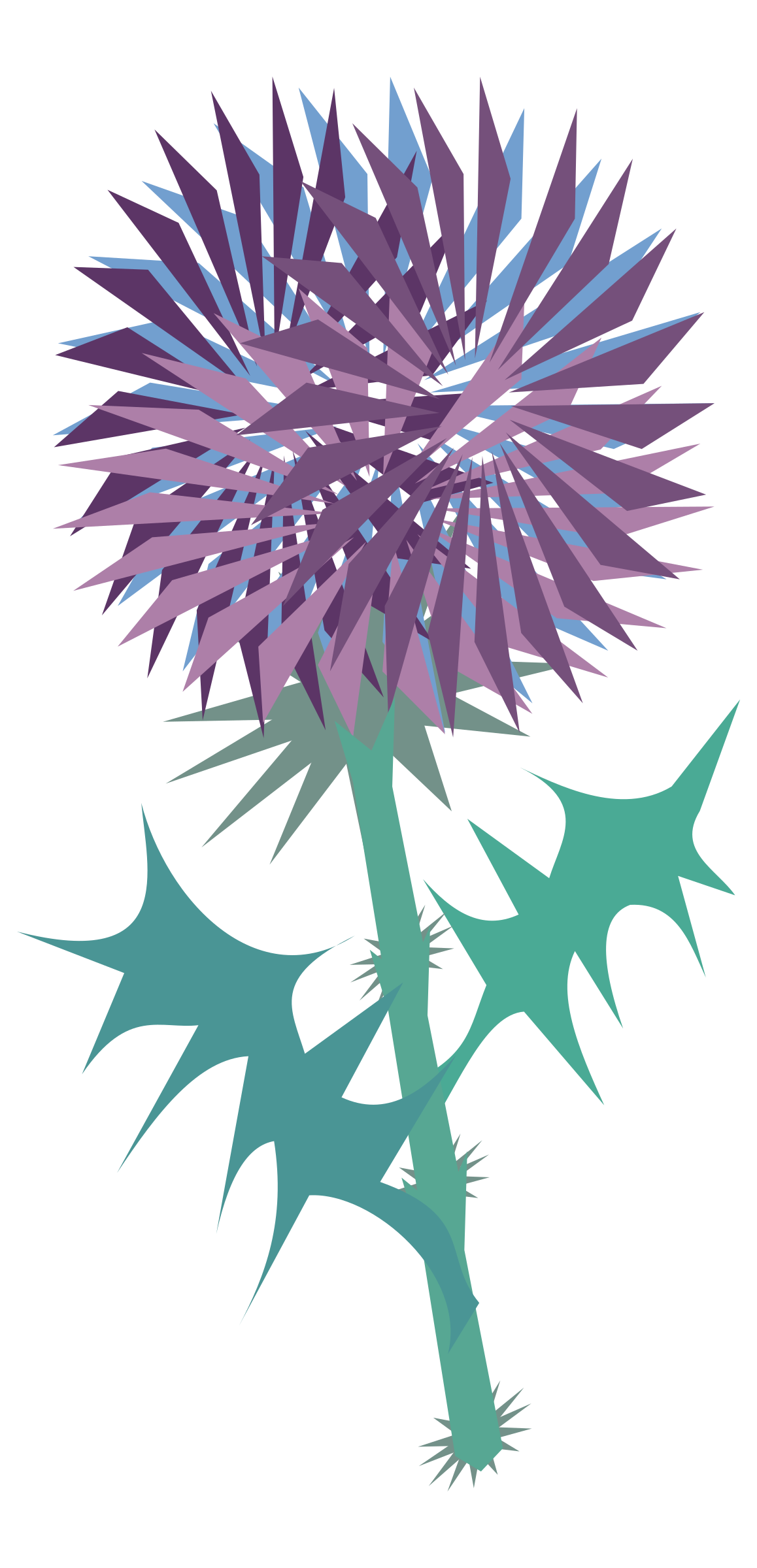 thistle by chatard