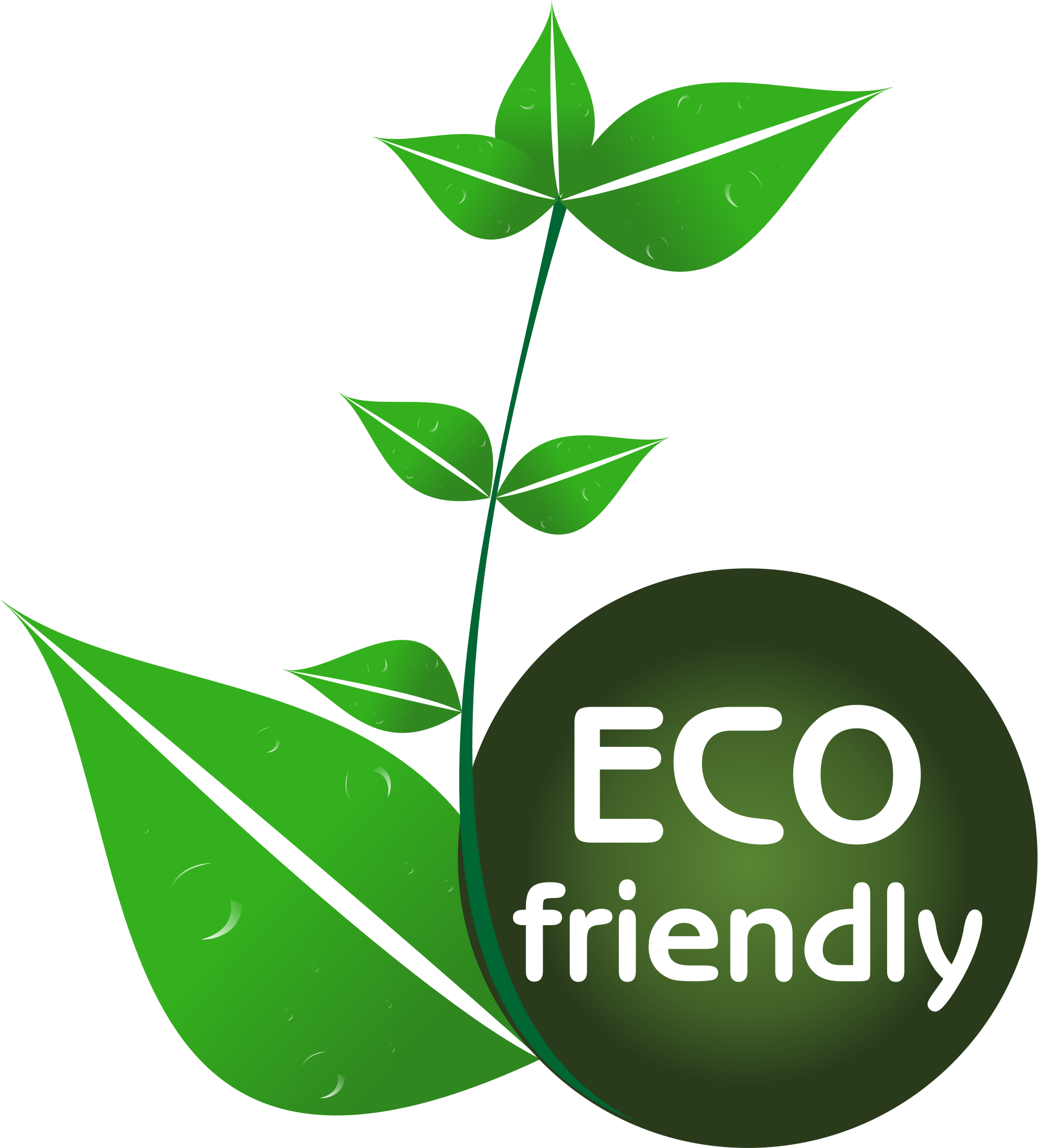 eco friendly Designing eco-friendly products to reduce environmental impact across the  product lifecycle, kao has created its own design for environment (dfe)  guidelines.