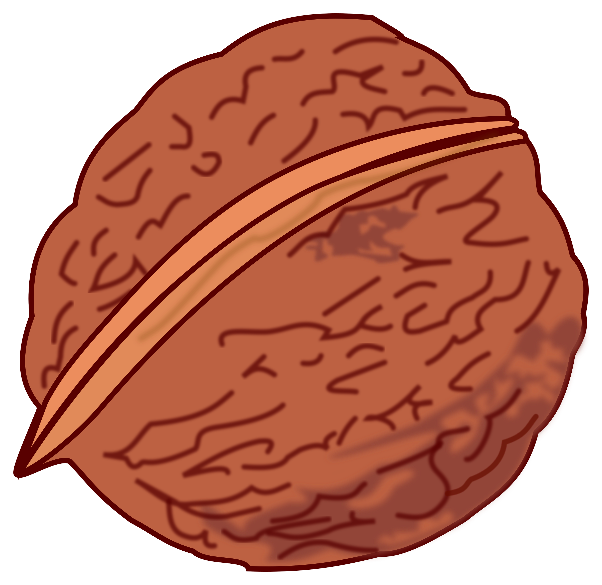 walnut colored by frankes