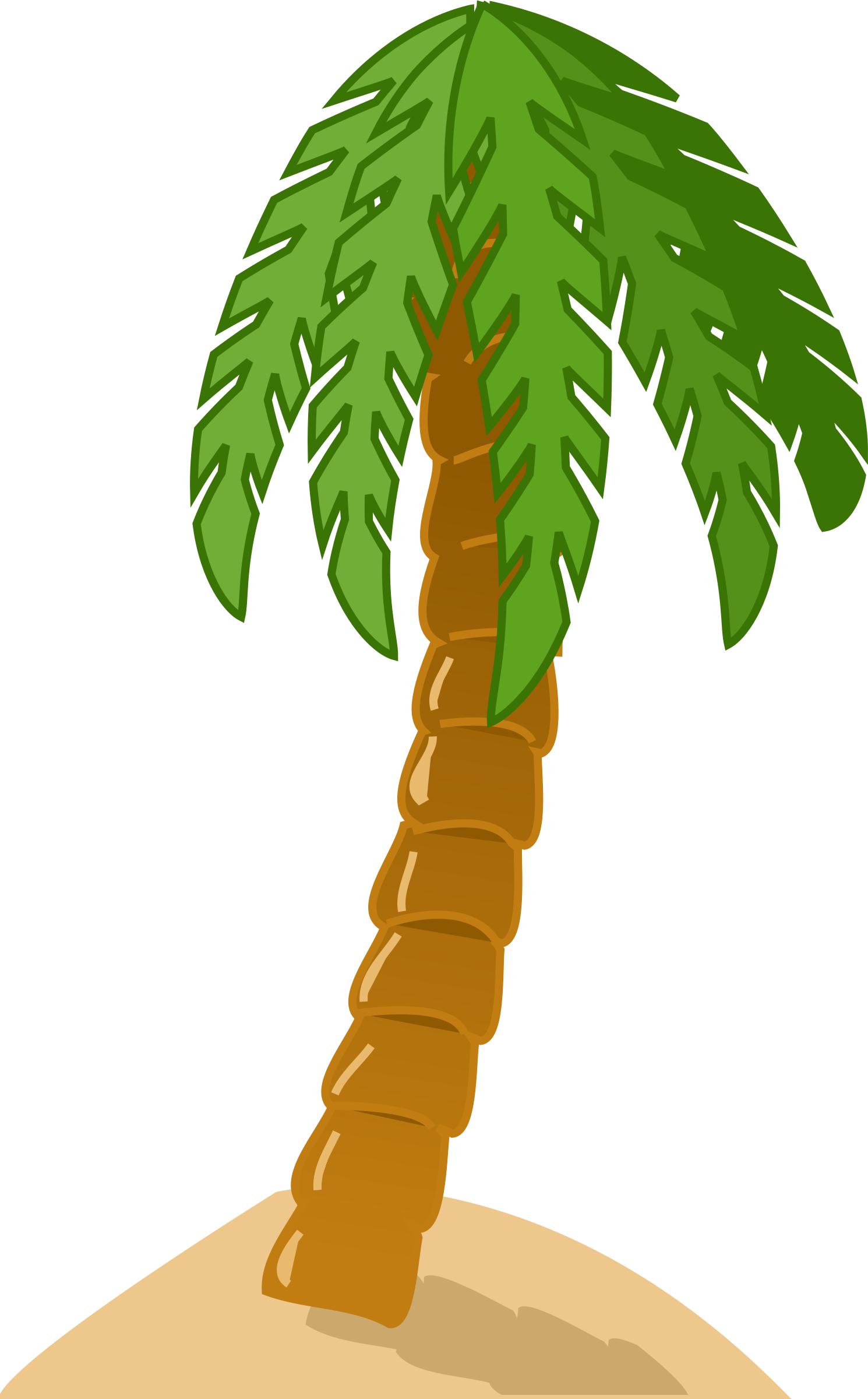 Palm tree by rg1024