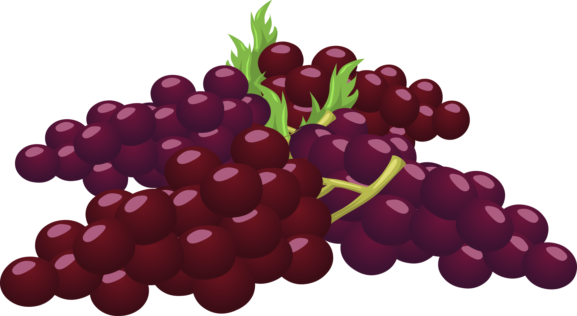 Food Bunch Of Grapes by glitch
