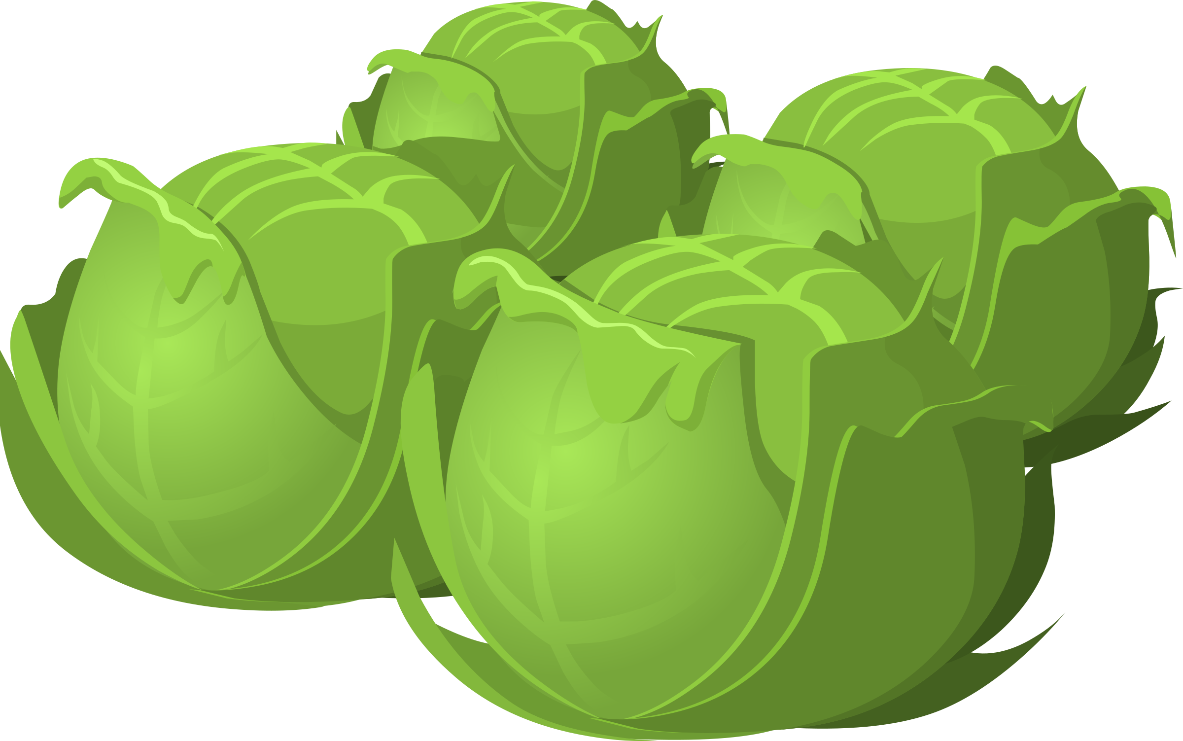 Food Cabbage by glitch