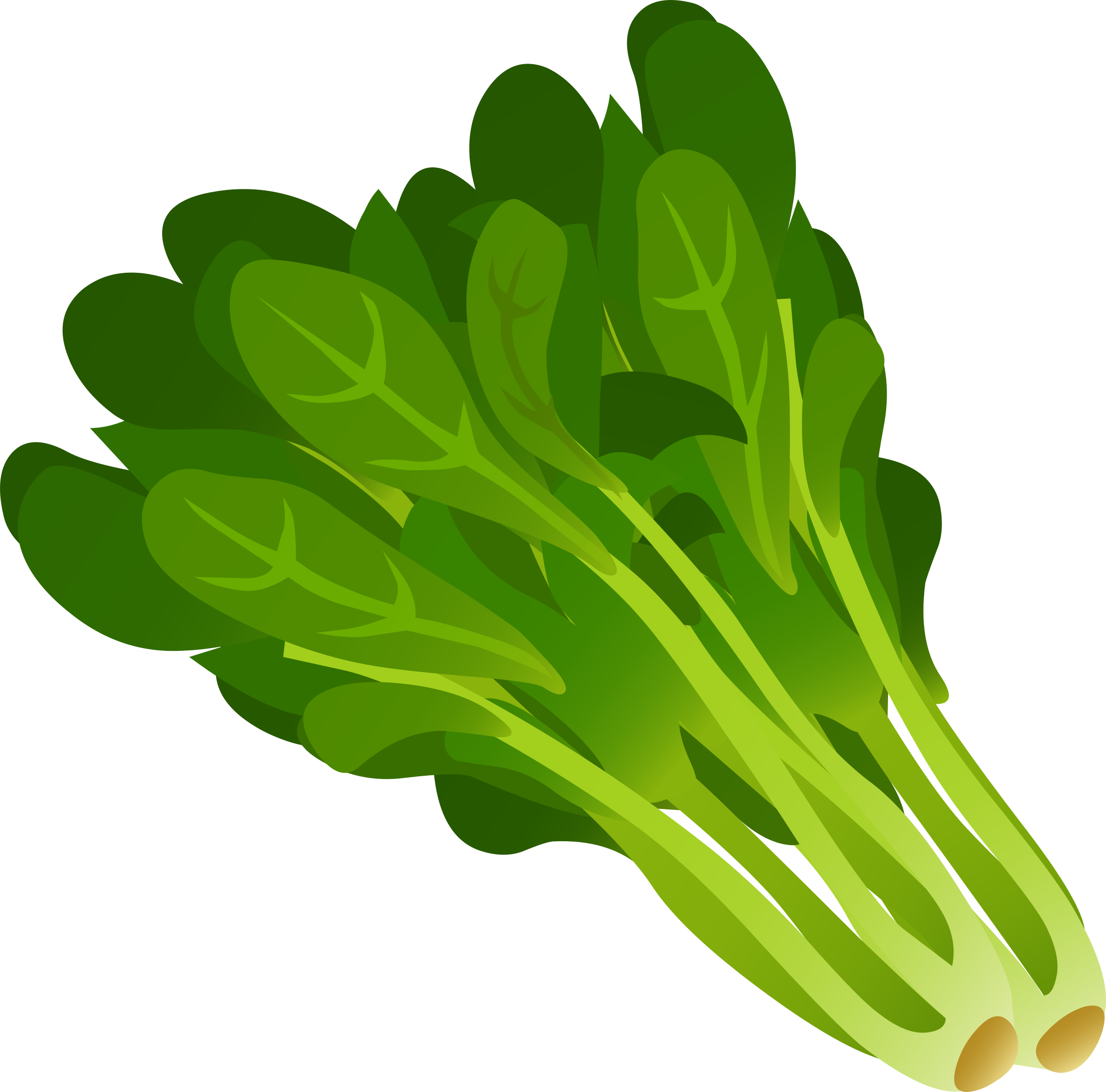 Food Spinach by glitch