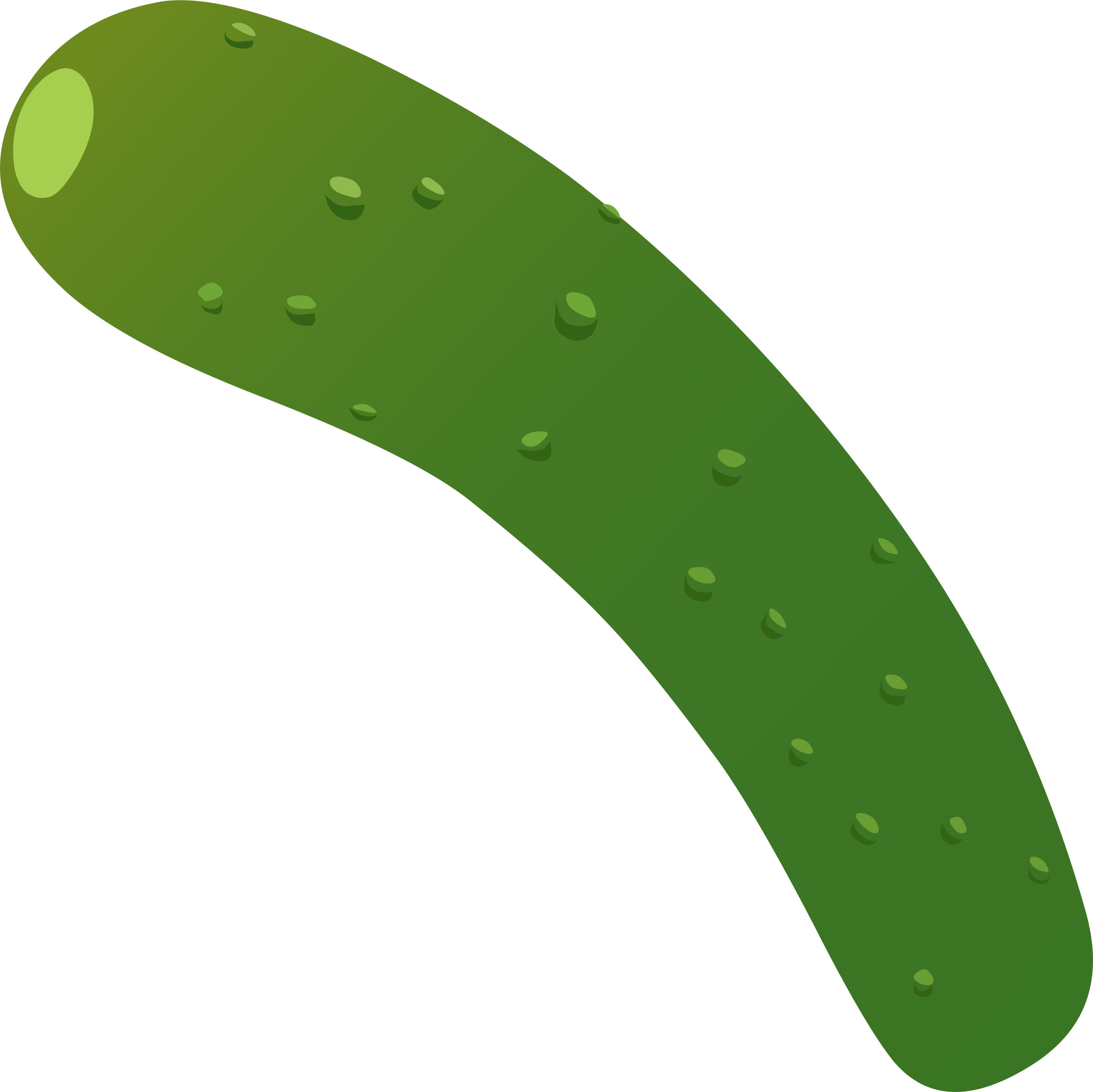 Food Zucchini by glitch