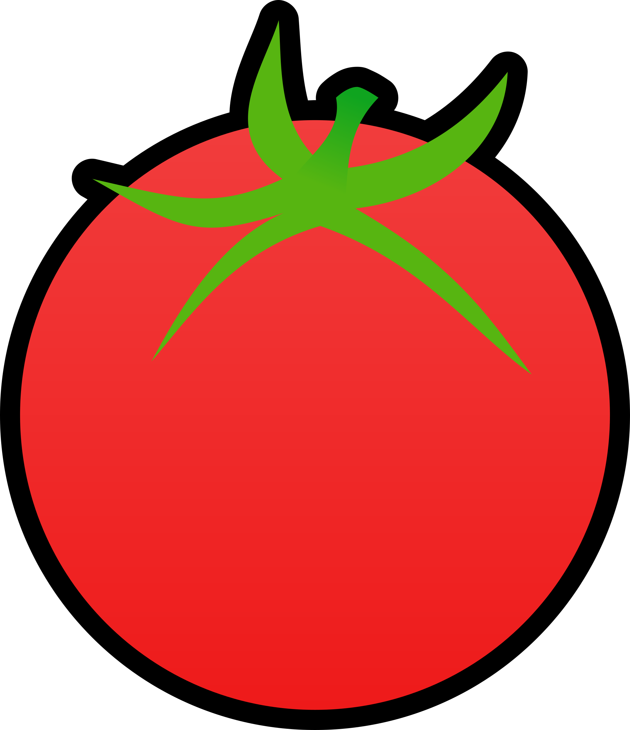 Tomato by qubodup