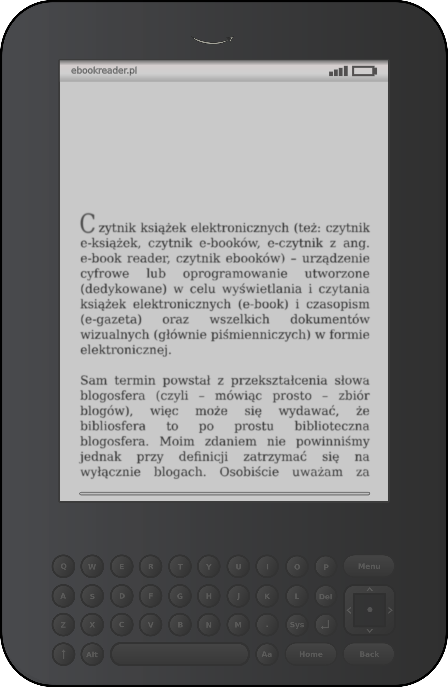E-book reader by bocian