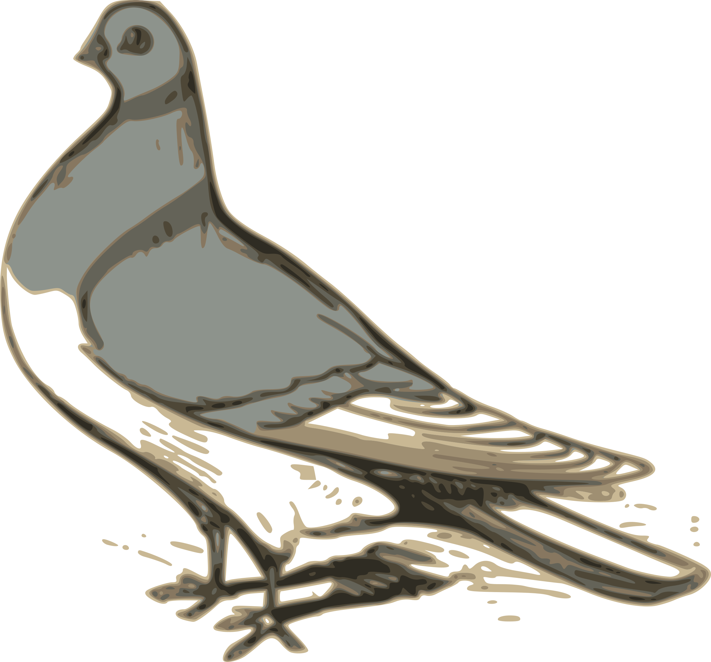 pigeon illustration by ossidiana