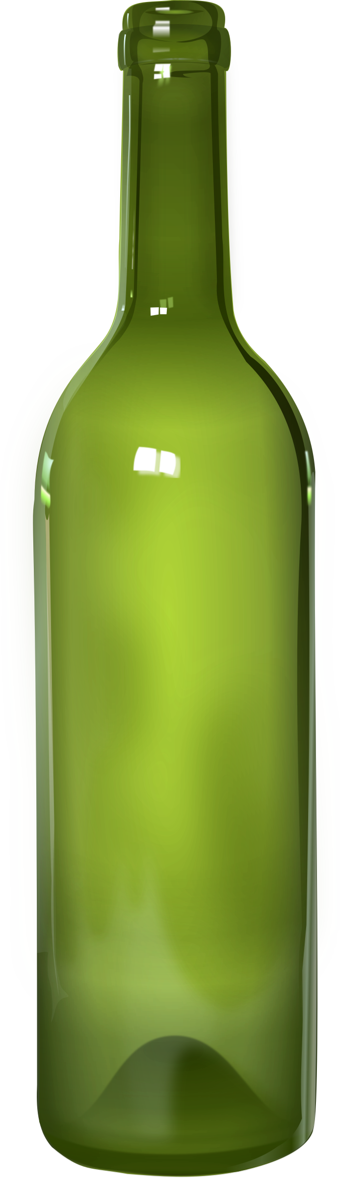 Bottle - detailed by metalorg